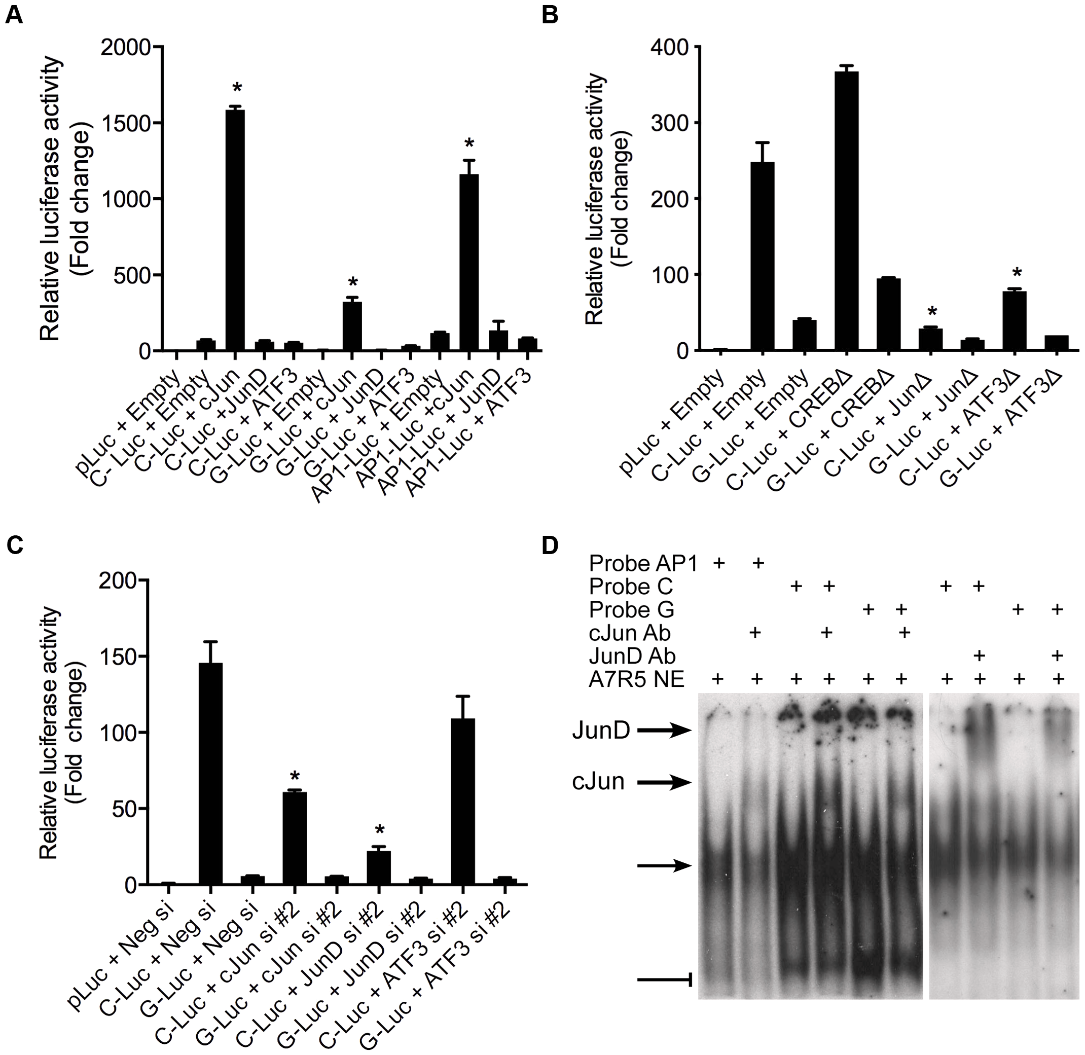 AP-1 dependent transcriptional regulation at rs12190287 <i>in vitro</i>.