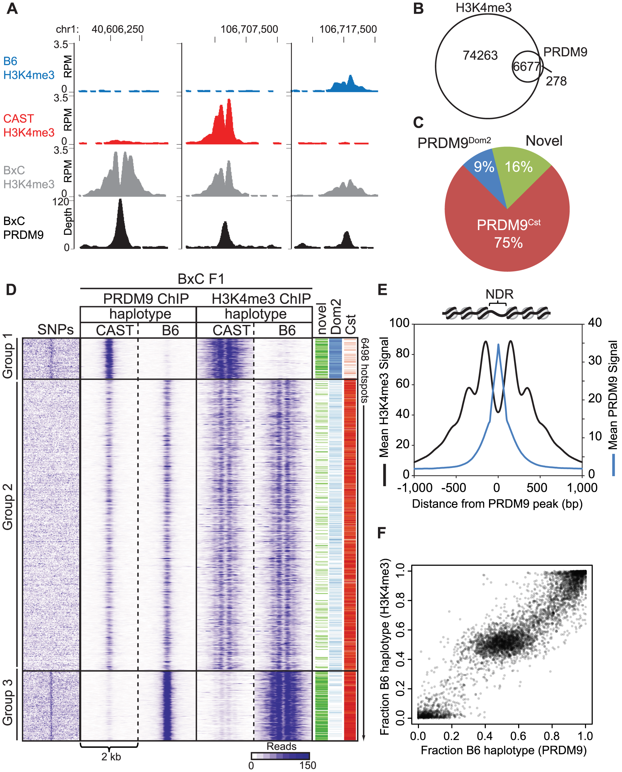 PRDM9 binding shows large haplotype bias in vivo.