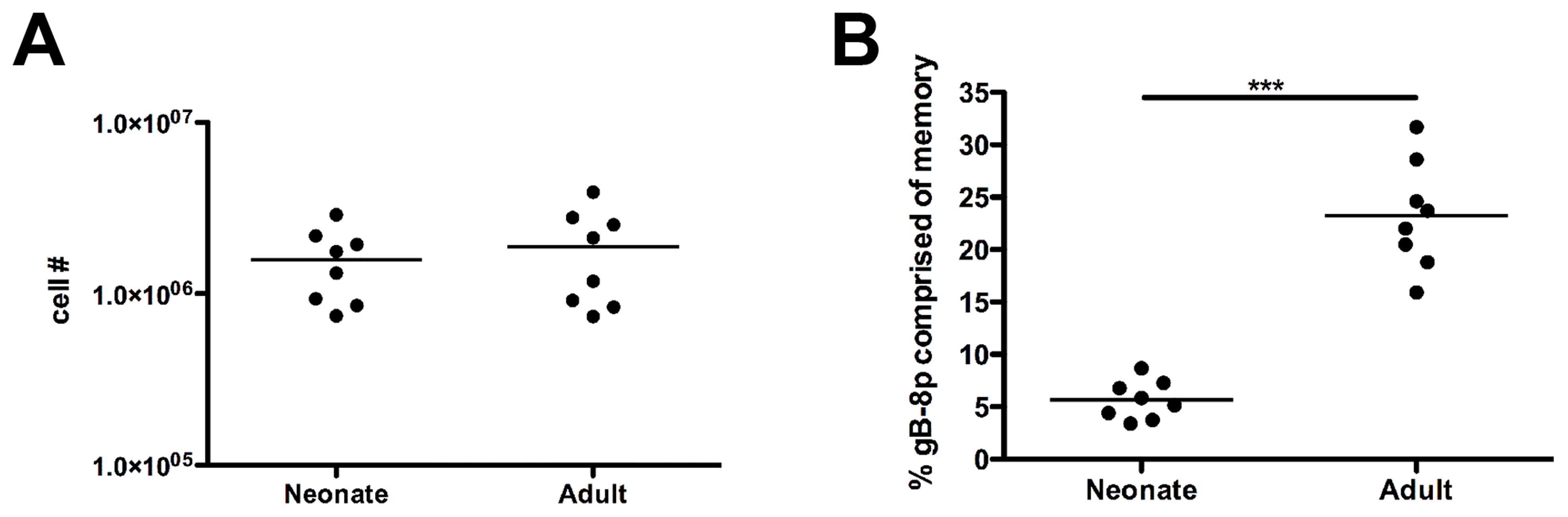 Memory CD8+ T cells from neonatal mice exhibit impaired recall responses.