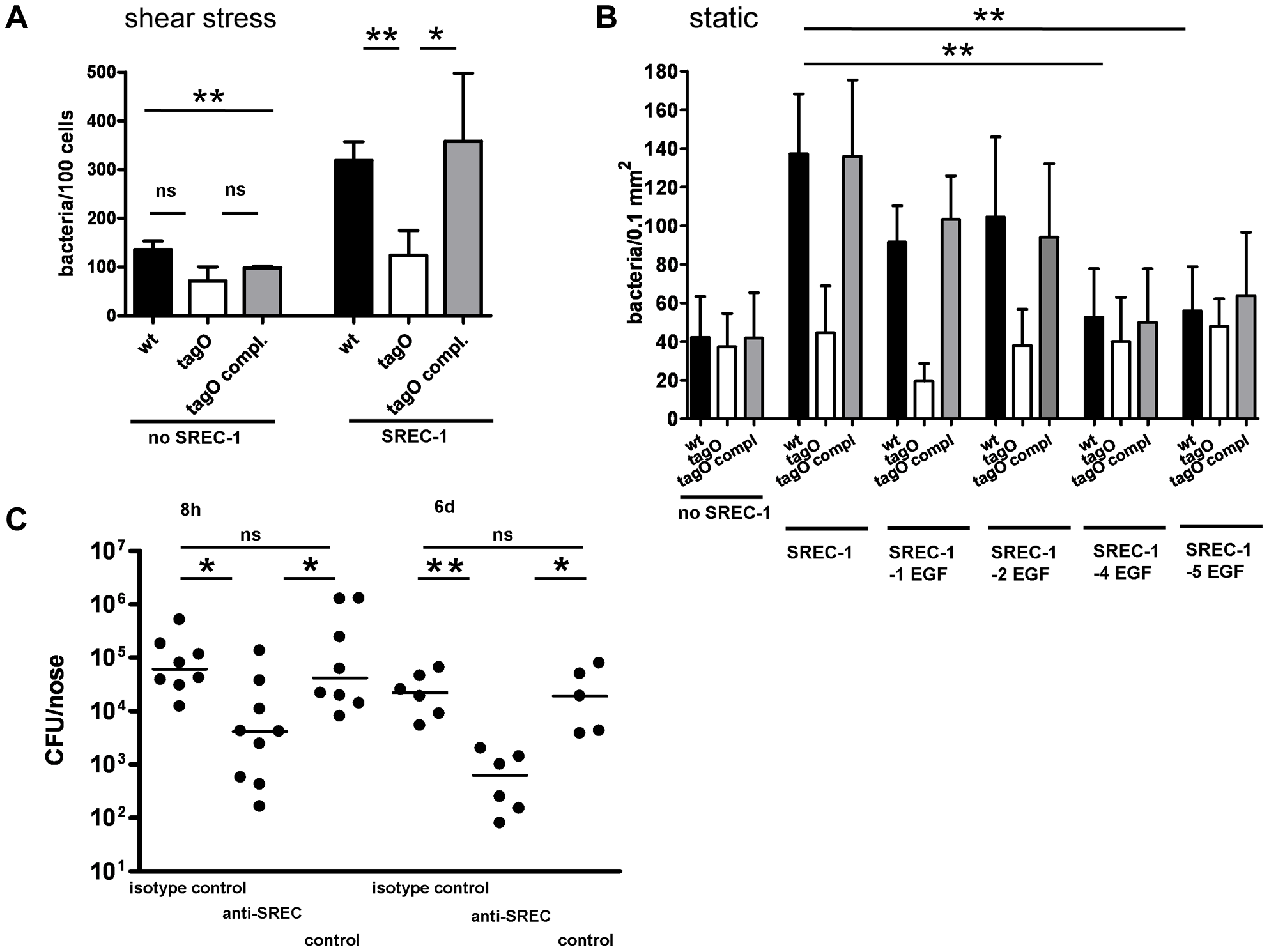 Impact of SREC-I on adhesion of <i>S. aureus</i> to CHO epithelial cells and impact of SREC-I on the early phases of nasal colonization in the cotton rat model.