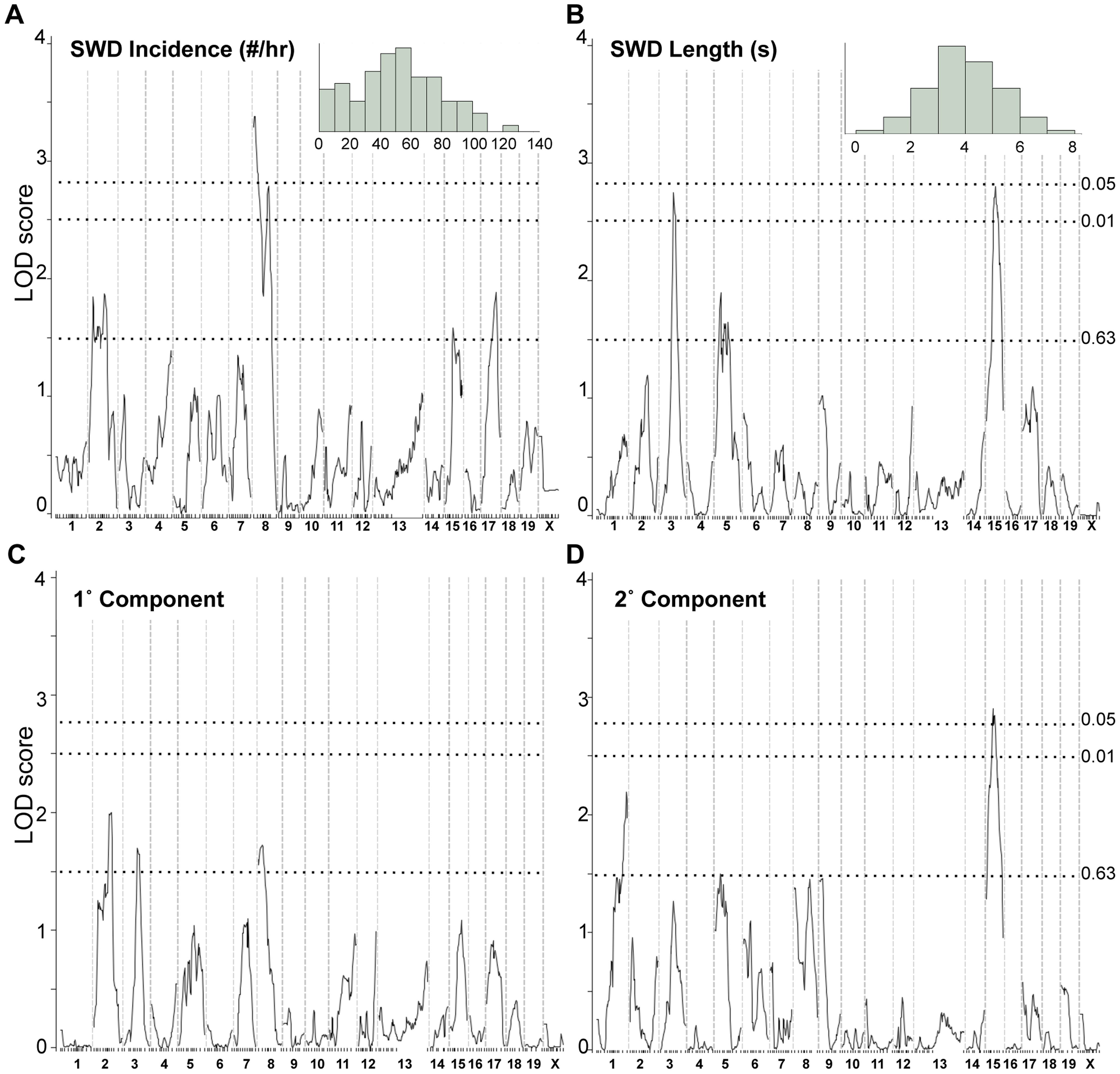 Genome scans for SWD traits in <i>Gria4</i> deficient backcross mice.