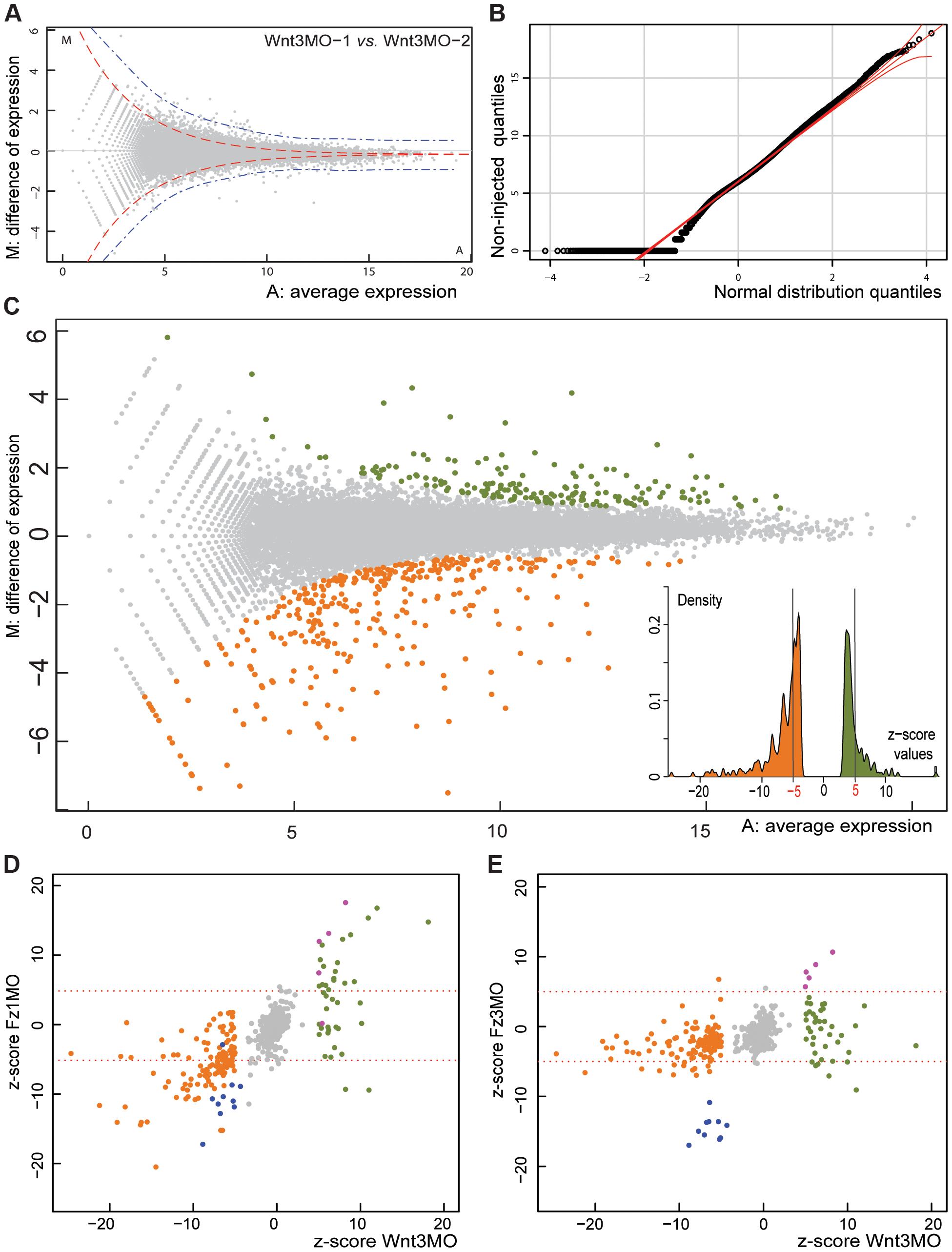 Identifying Clytia early gastrula patterning genes by DGE.