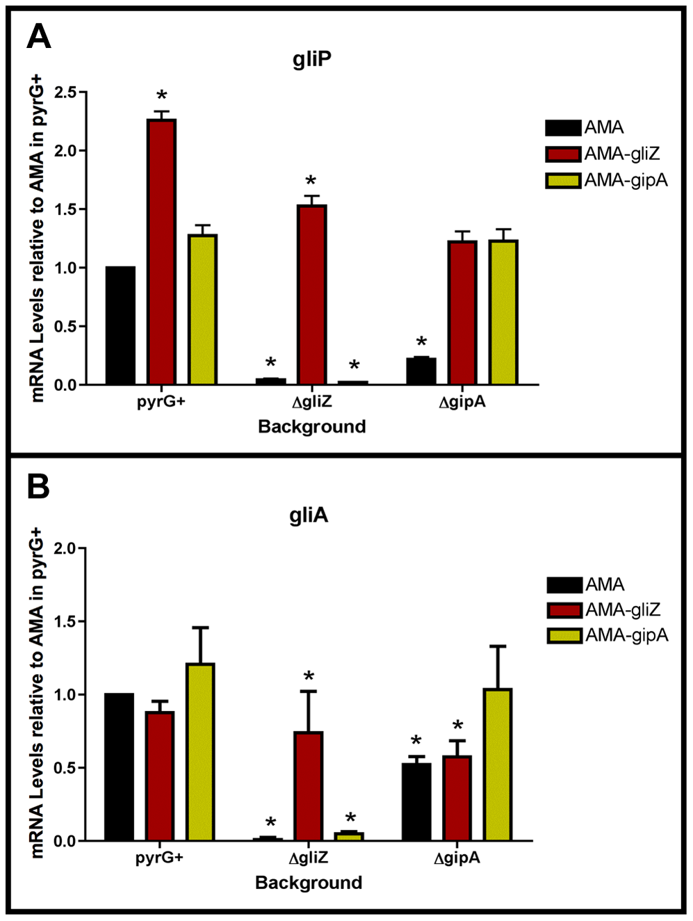 GliZ and GipA are dependent on each other for <i>gliA</i> induction.
