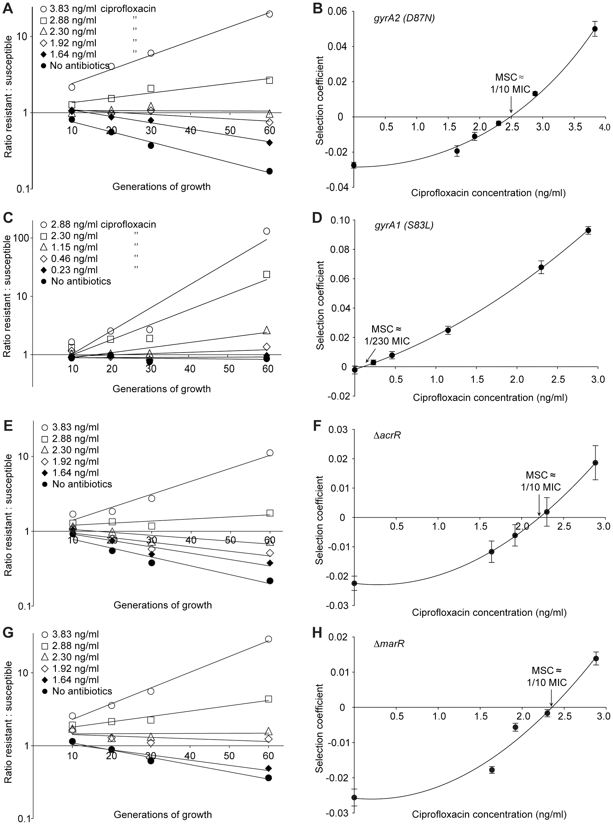 Competition experiments between susceptible and resistant strains, ciprofloxacin.