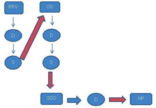 Hipoterapeutické postupy u diskinetické formy DMO – choreoatetóza.