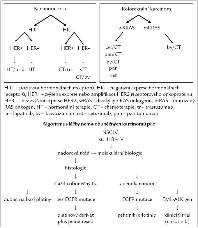 Algoritmus léčby metastazujícího onemocnění.