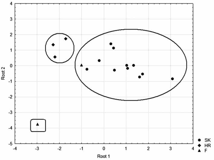Fig. 4. Linear discrimination score plot of honey samples based on saccharide content:  Slovak honey, Croatia honey, France honey