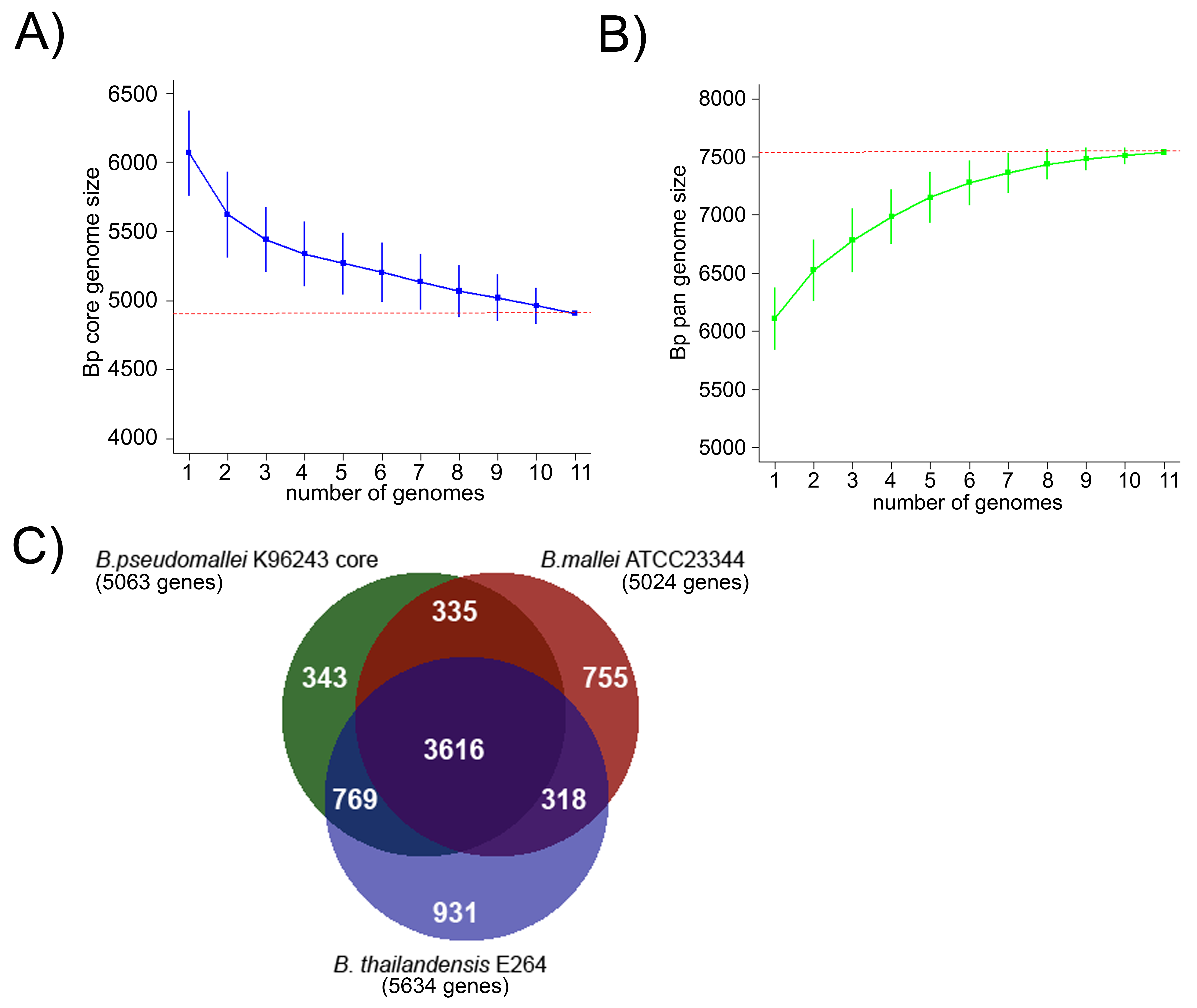 Comparative Analysis of the Bp Core Genome.