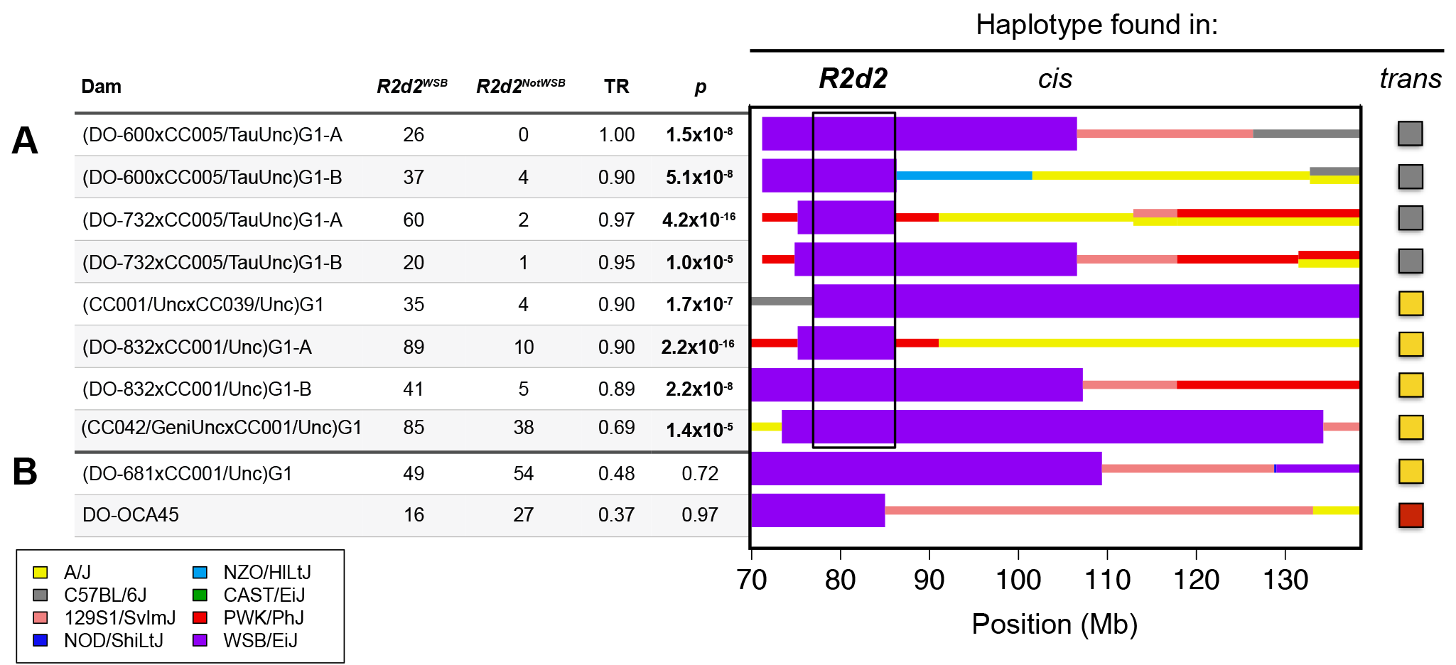 <i>R2d</i> maps to a 9.3 Mb candidate interval.