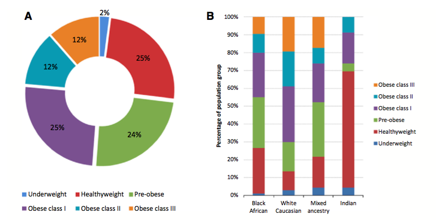 Figure 1. Distribution of the study cohort according to body mass index (BMI) classification. (A) Distribution according to BMI classification of the entire cohort. (B) Percentage distribution of BMI classification according to racial group. BMI classifications assigned according to the World Health Organisation (WHO): Underweight, BMI < 18.50; Healthy weight, BMI = 18.50–24.99; Pre-obese, BMI = 25.00–29.99; Obese class I, BMI = 30.00–34.99; Obese class II, BMI = 35.00–39.99; and Obese class III, BMI ≥ 40.00.