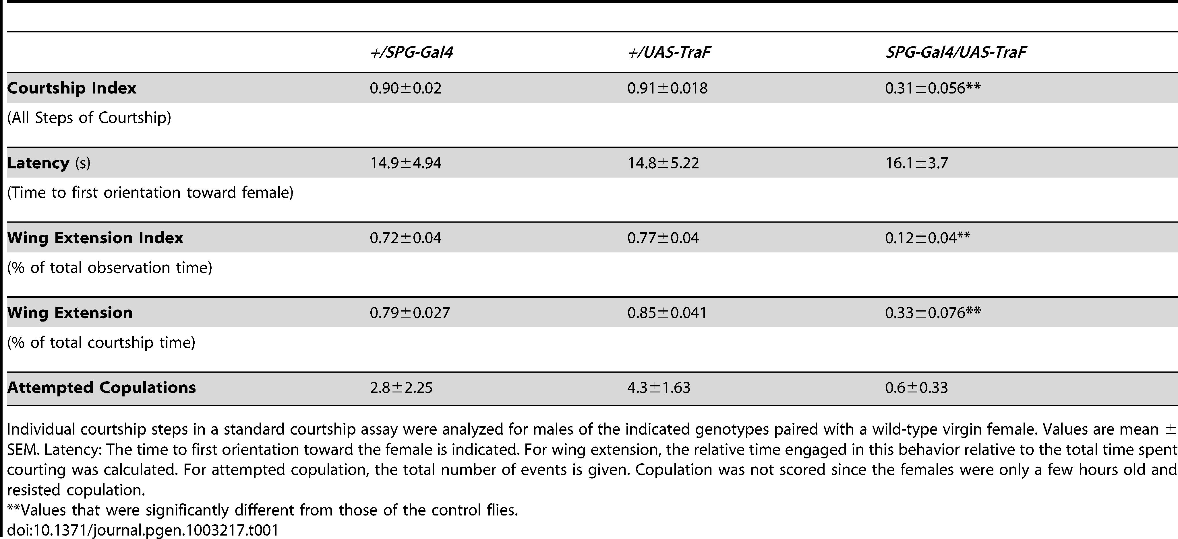 Individual courtship elements in <i>SPG-Gal4/UAS-TraF</i> males.