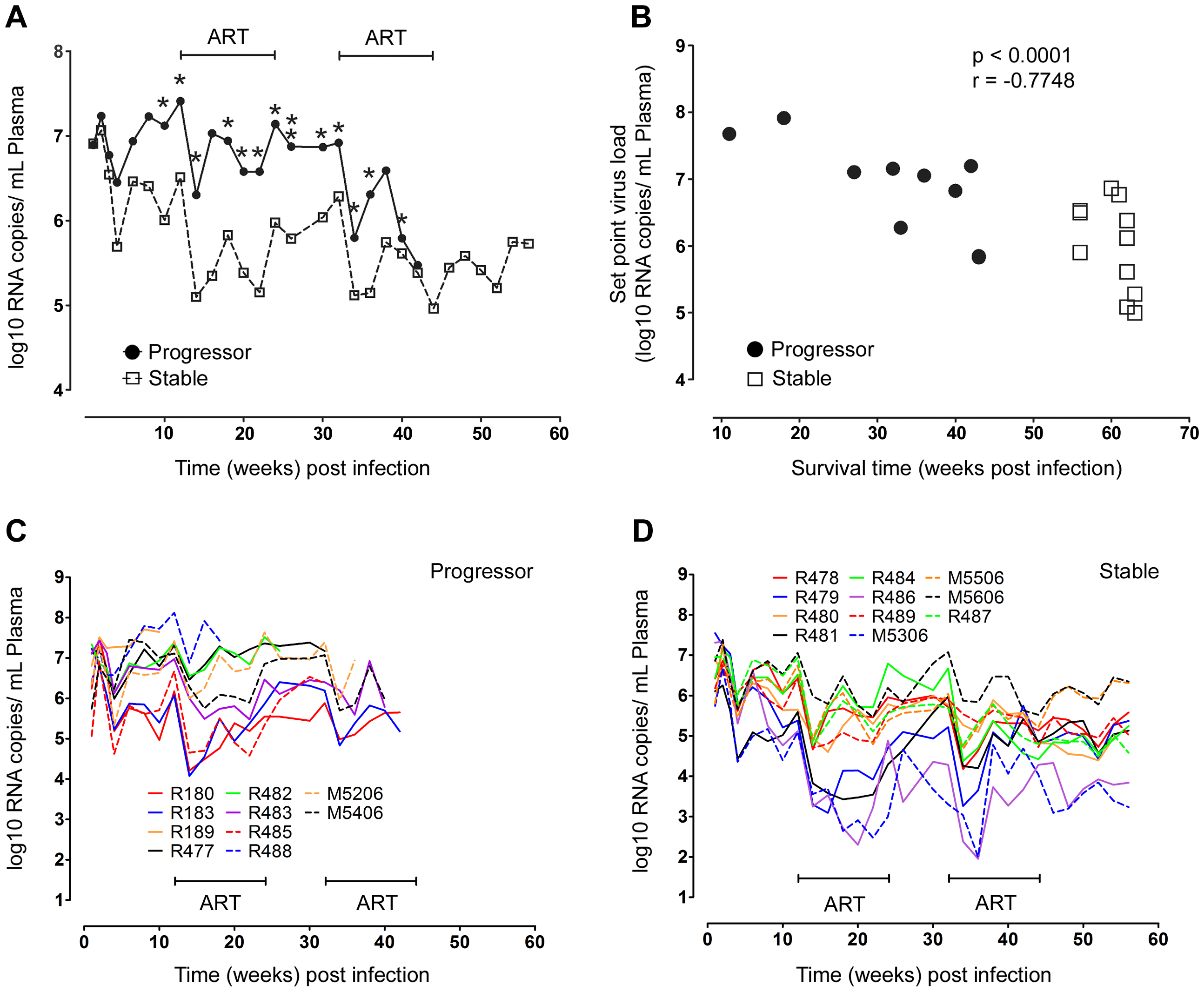 Relationship between virus load and disease progression in SIV infected macaques.