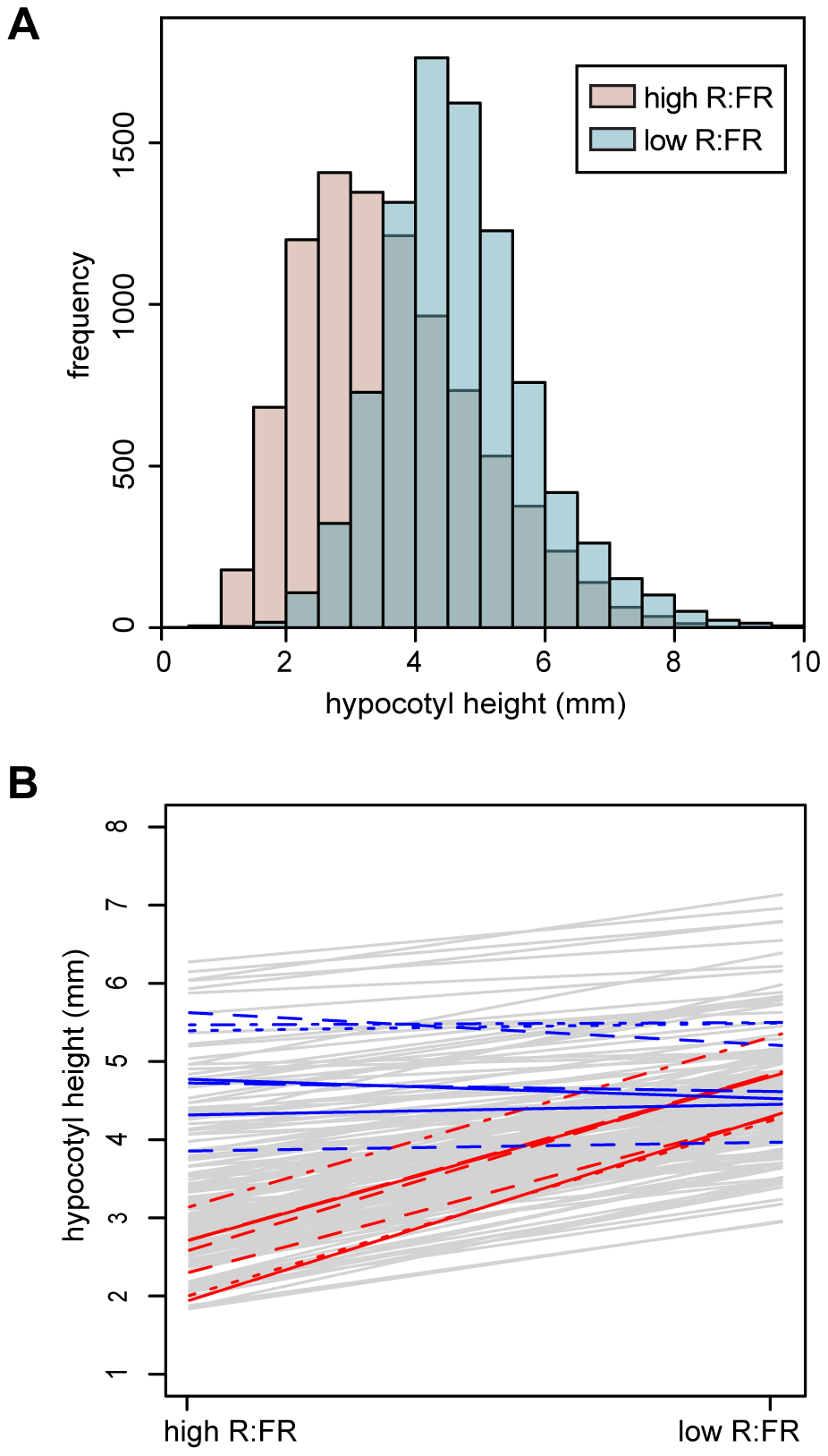 Hypocotyl height phenotypes.