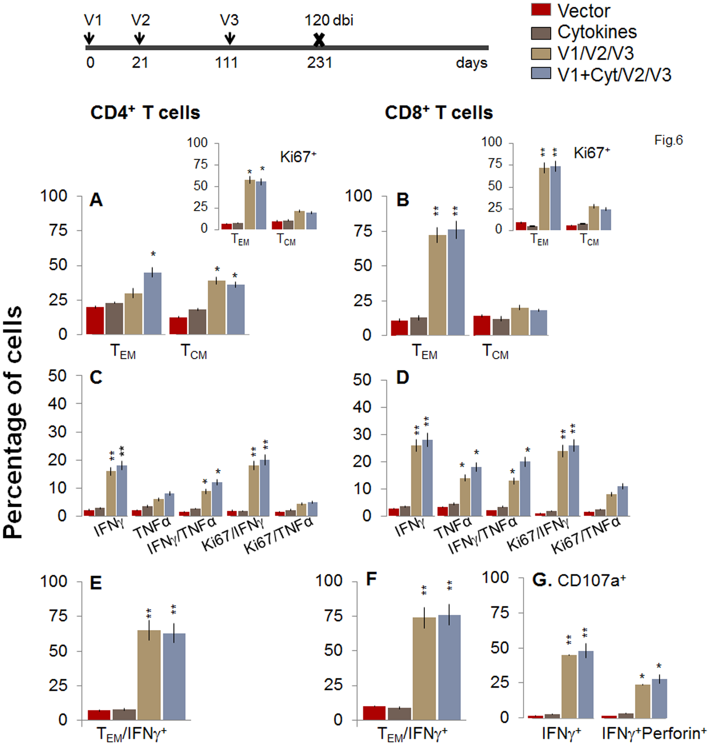 Two-component D/P vaccine/bi elicited T cells retain the antigen-specific functional profile at 120 days post bi.