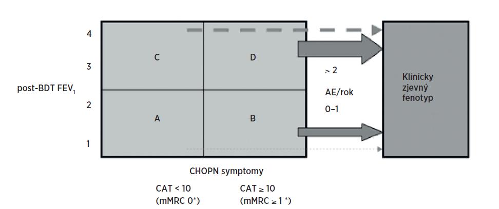 Klasifikace CHOPN podle kategorií (A–D) a její využití pro pátrání podle fenotypu