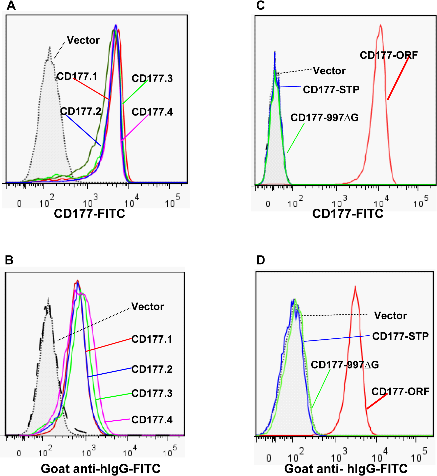 Effect of <i>CD177</i> SNPs or mutation on HNA-2 expression and HNA-2 alloantibody binding.
