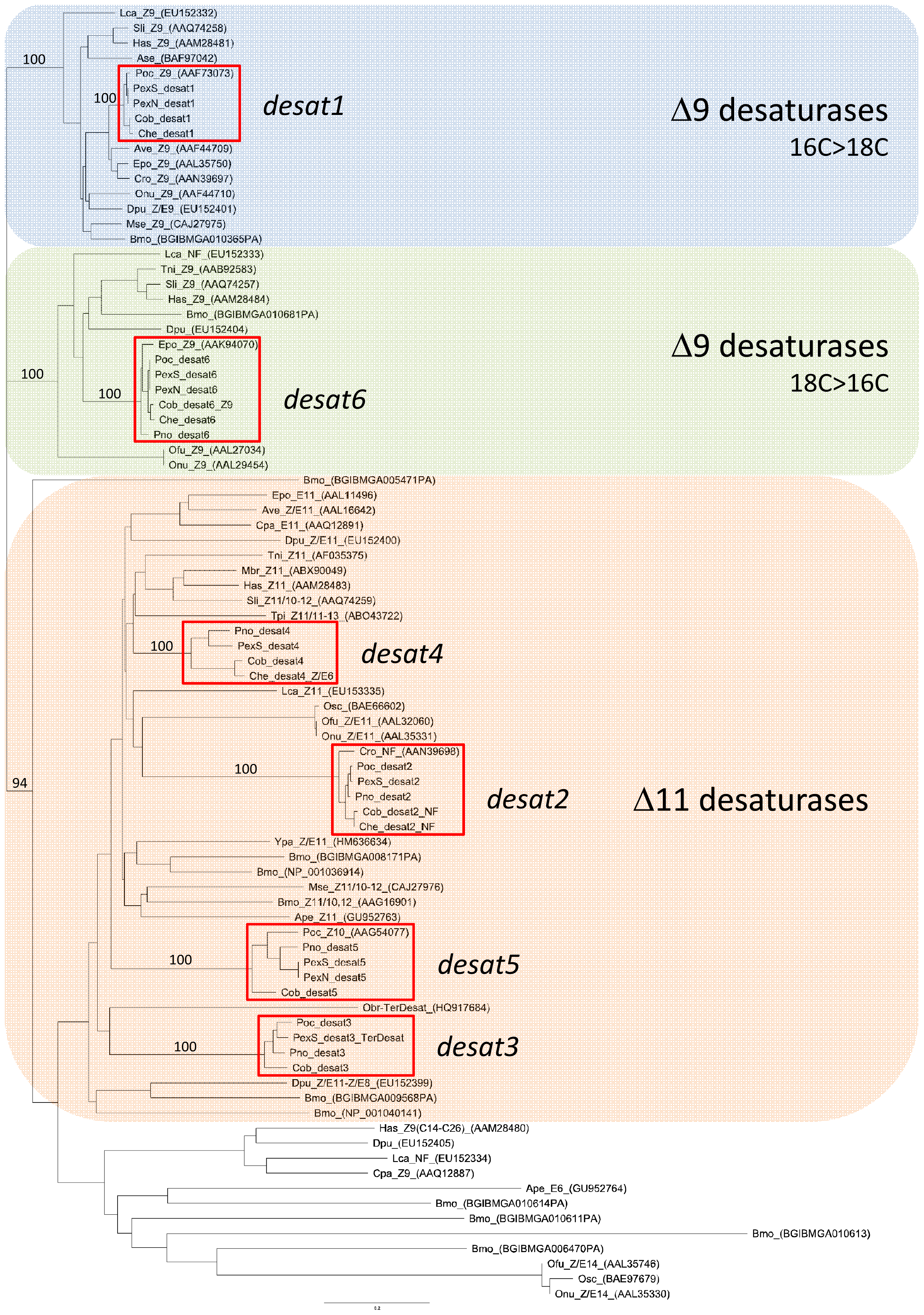Phylogeny of 86 lepidopteran desaturases including those encoded by <i>desat1-6</i> from <i>Ctenopseustis</i> and <i>Planotortrix</i>.