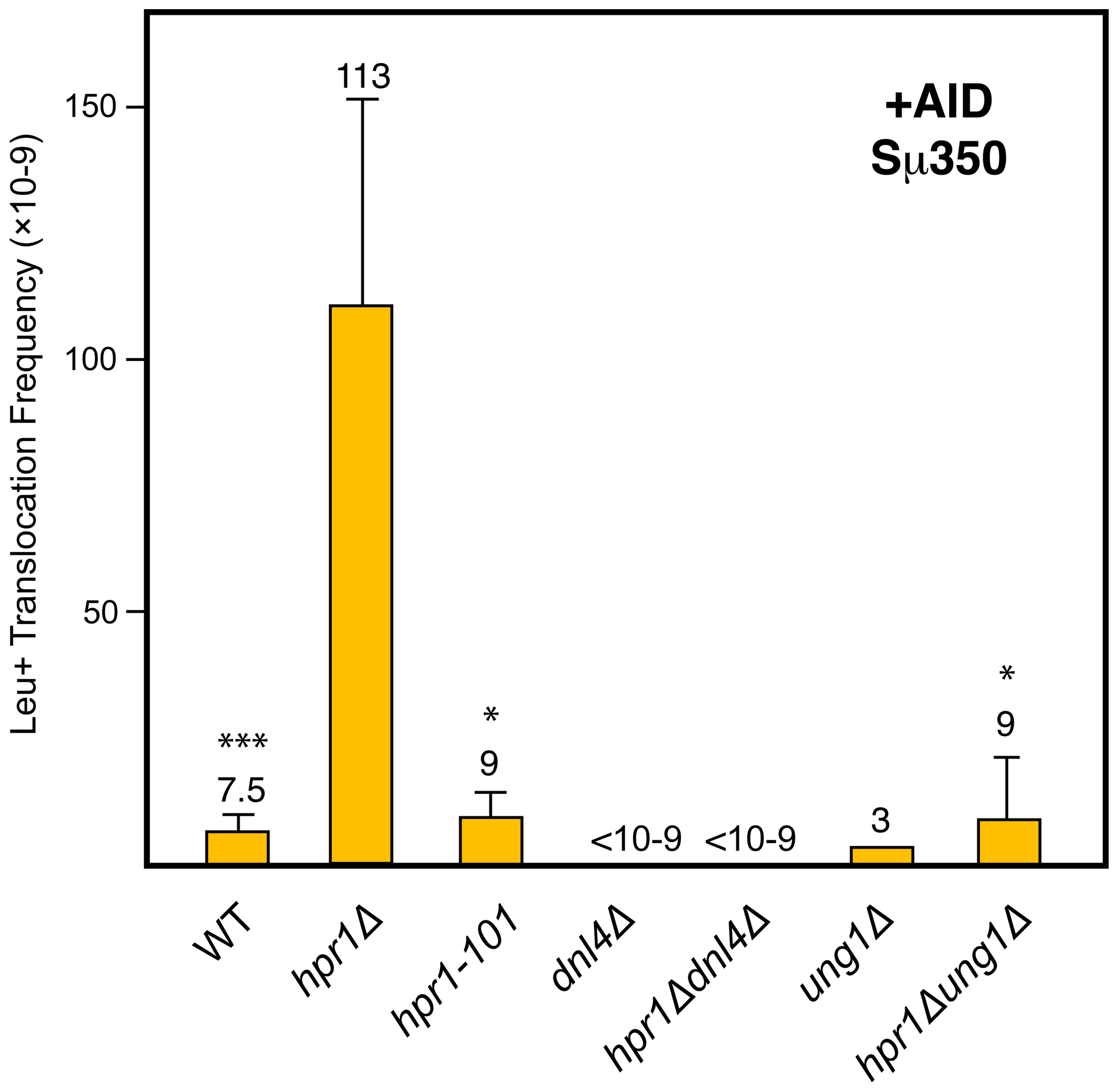 Analysis of Leu+ translocations in mutant strains overexpressing AID.