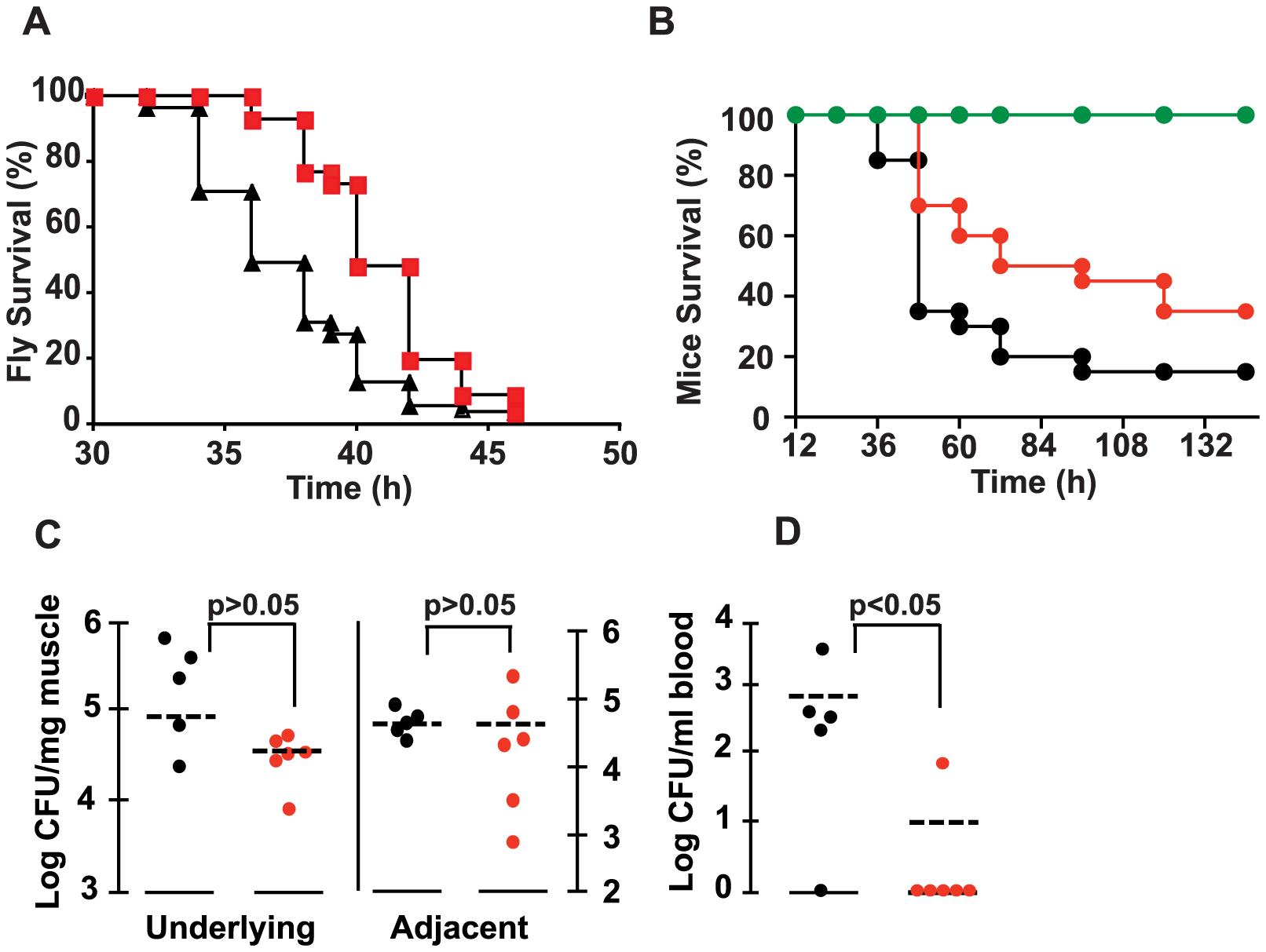 2-AA reduces <i>P. aeruginosa</i> virulence.