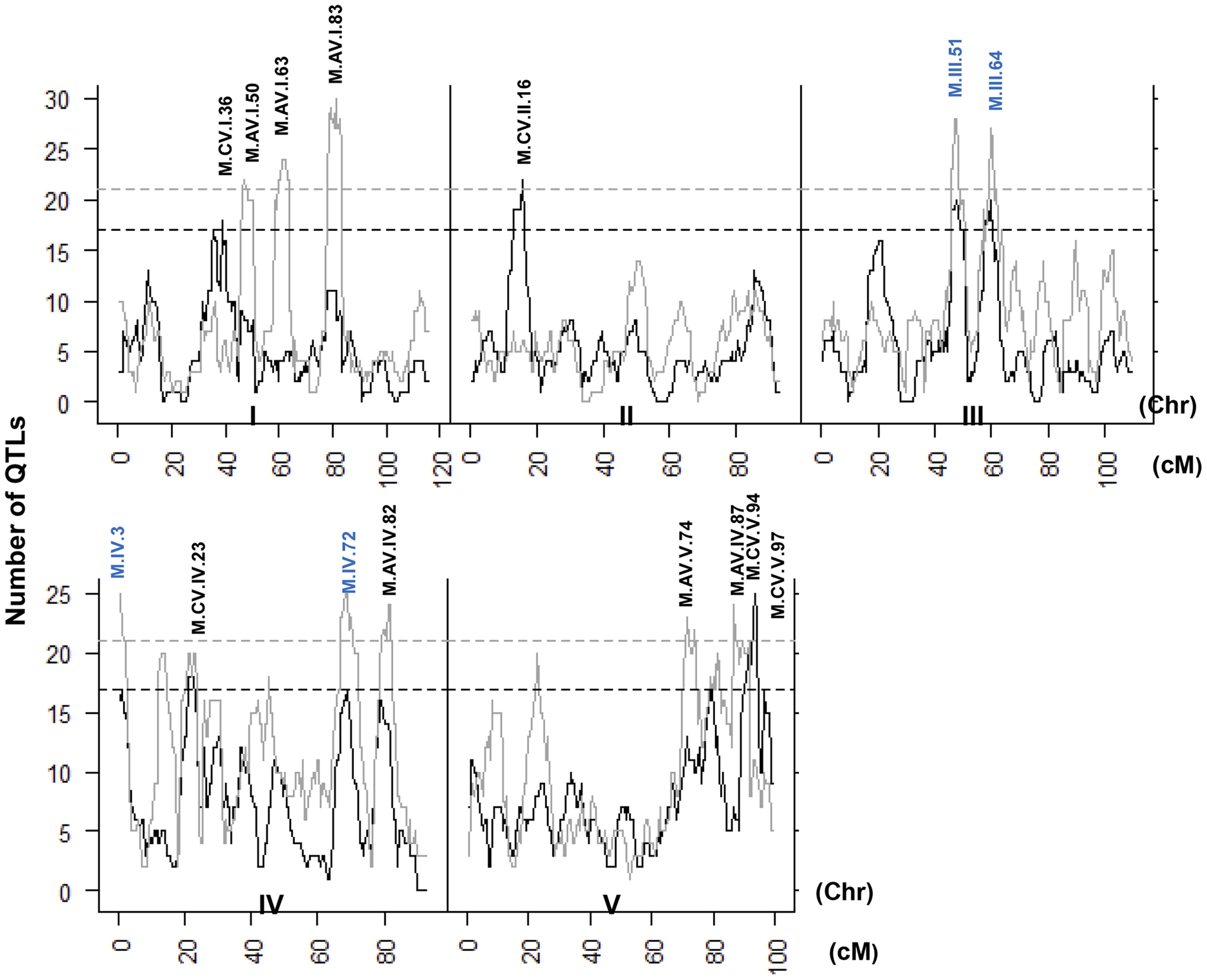 QTL hotspots for metabolite average and CV.