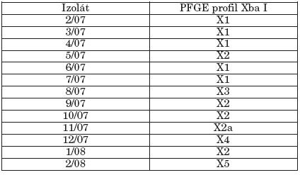 Makrorestrikčná analýza študovaných kmeňov S. Paratyphi B dT+ (S. Java) v pulznom elektrickom poli Table 3. Macrorestriction analysis of strains of S. Paratyphi B dT+ (S. Java) in pulsed-field gel electrophoresis