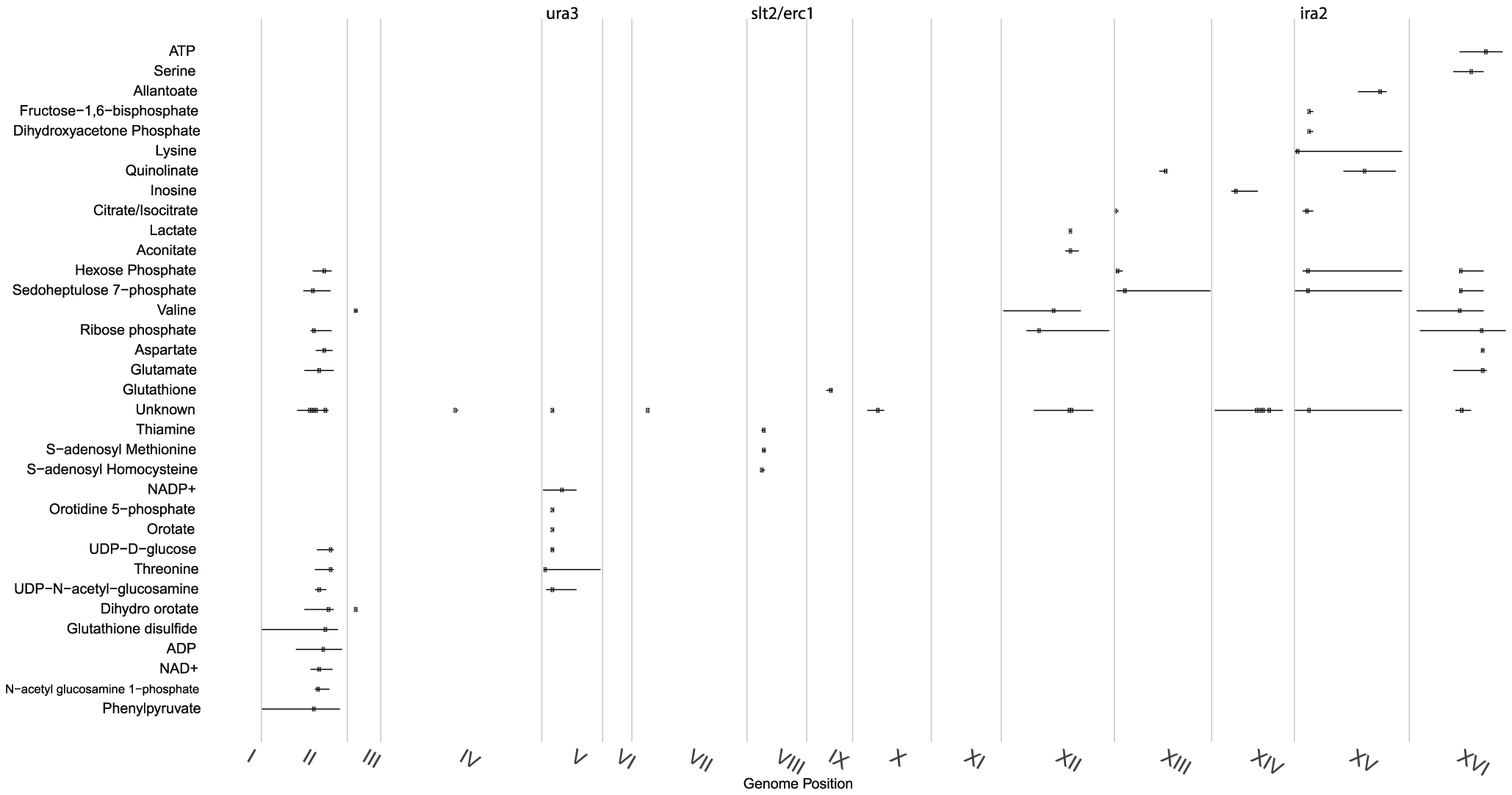 Distribution of significant linkages across the genome.