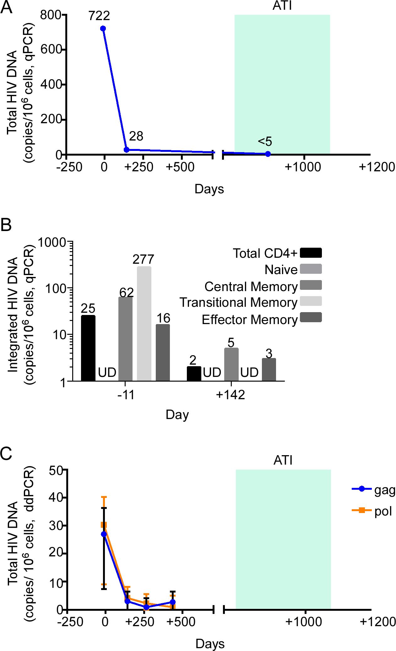 HIV-1 DNA monitoring in the peri-transplant period.