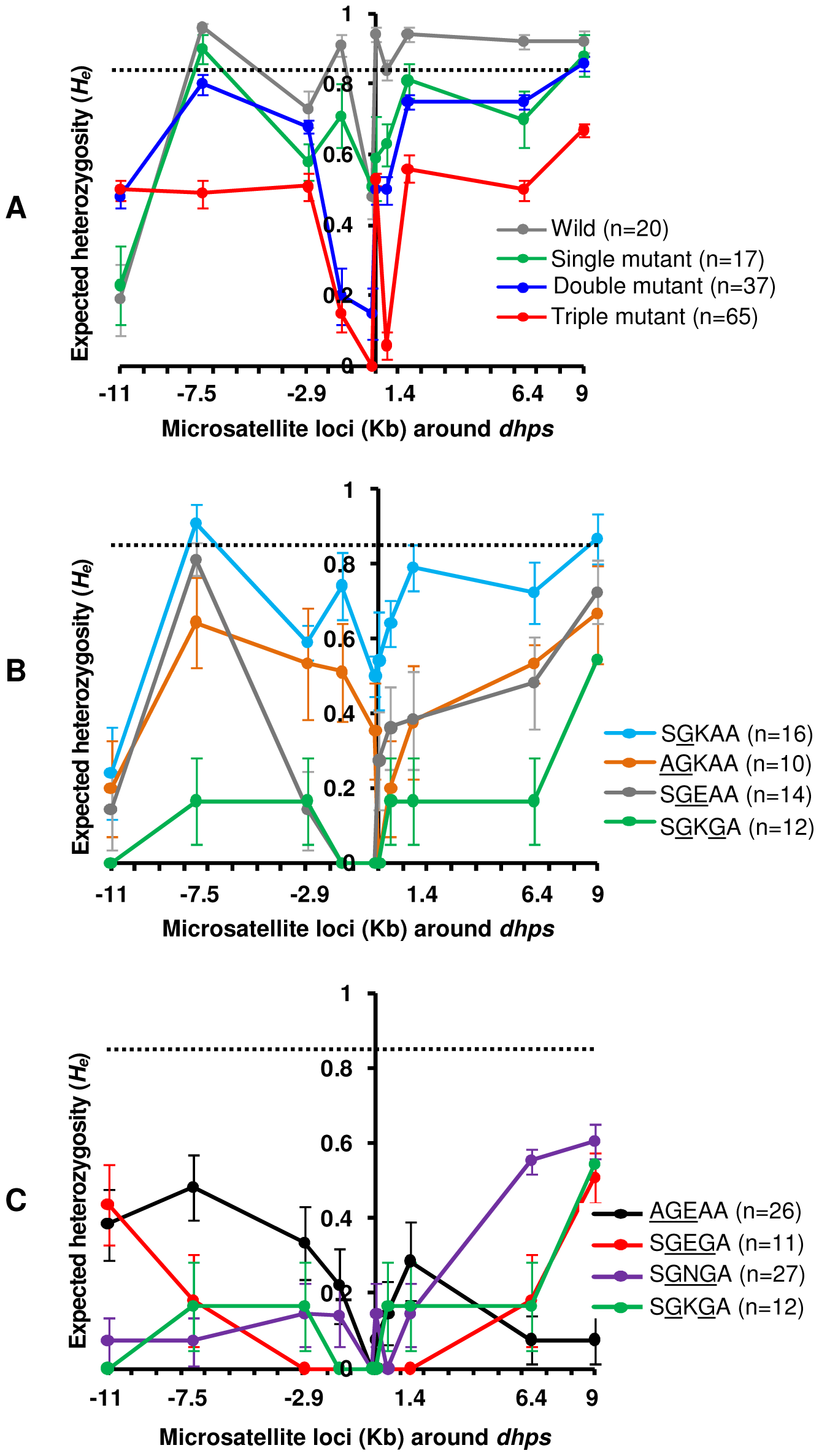 Selective sweeps around <i>dhps</i> alleles in Cambodia.
