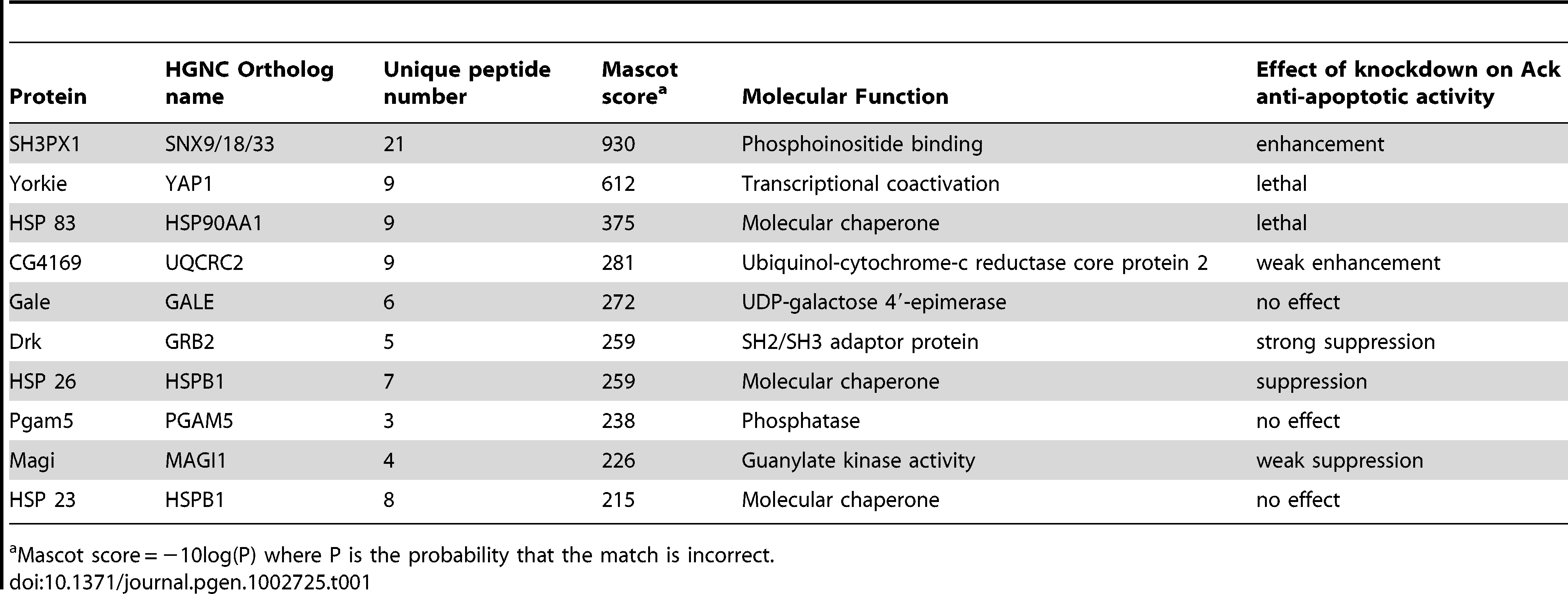 Top ten Ack interacting proteins based on their Mascot score.