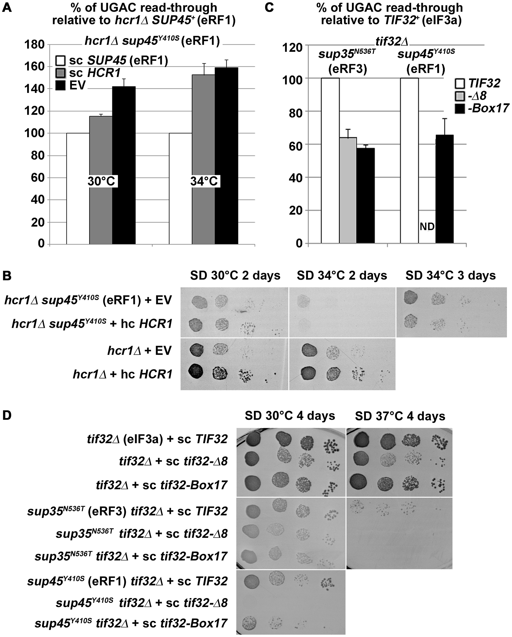 <i>hcr1Δ</i> and eIF3 mutants genetically interact with release factor mutants.