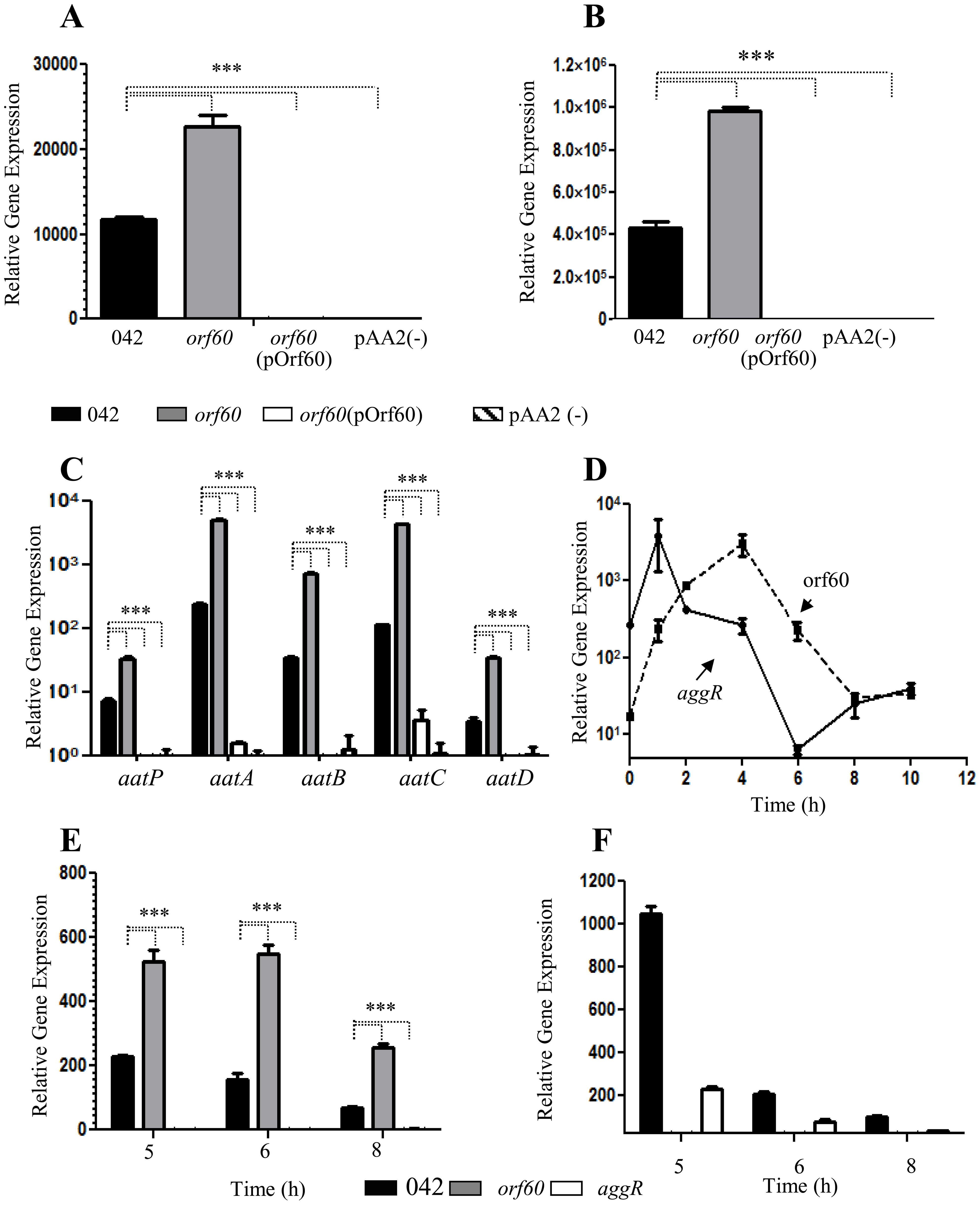 Orf60 represses expression of AggR and its regulon.