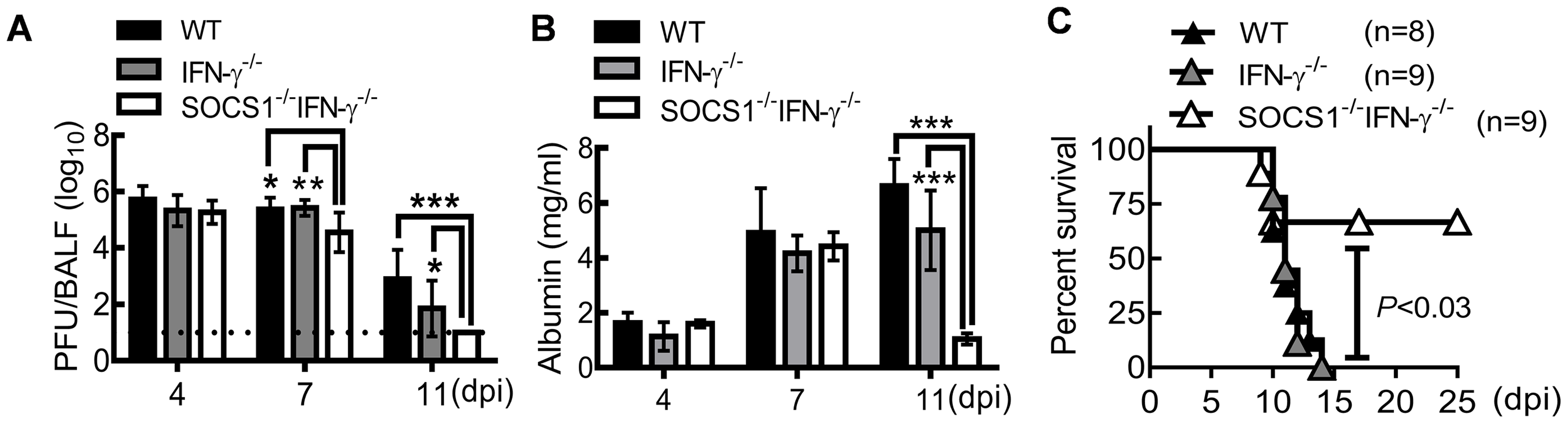SOCS1<sup>−/−</sup>IFN-γ<sup>−/−</sup> mice are more resistant to influenza infection.
