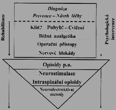 Schéma 4. Algoritmus léčby chronických bolestí zad