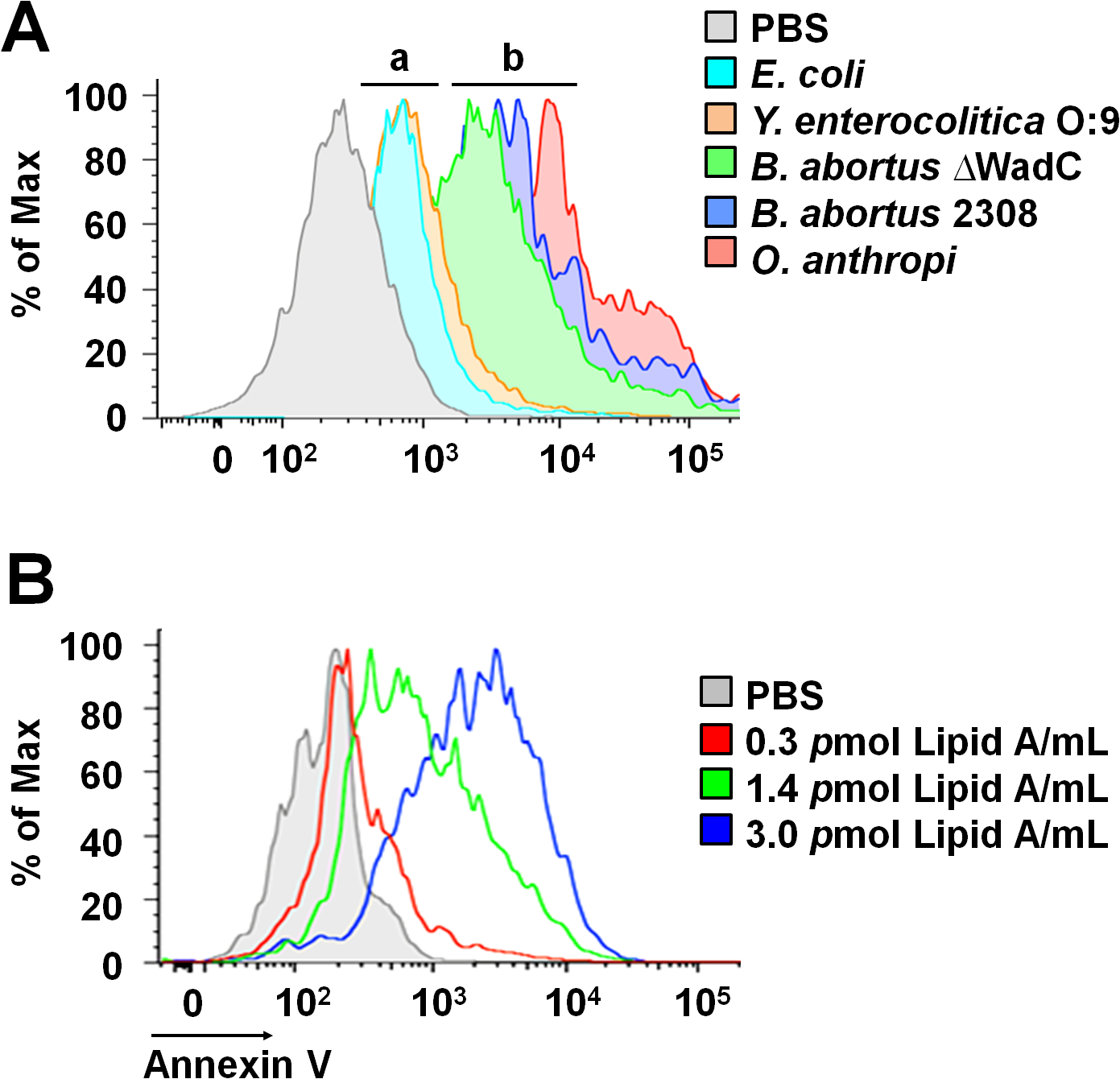 <i>Brucella</i> lipid A induces PMNs cell death in a dose dependent manner.