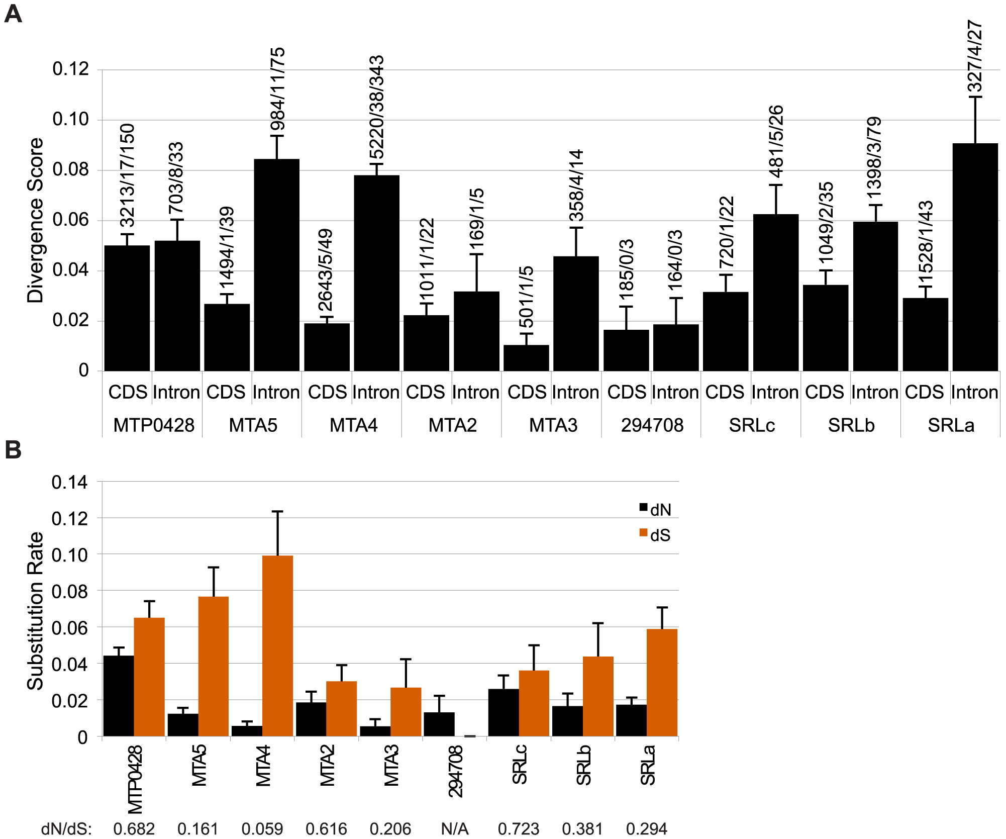 Divergence of autosomal and <i>MT+</i> duplicated genes.