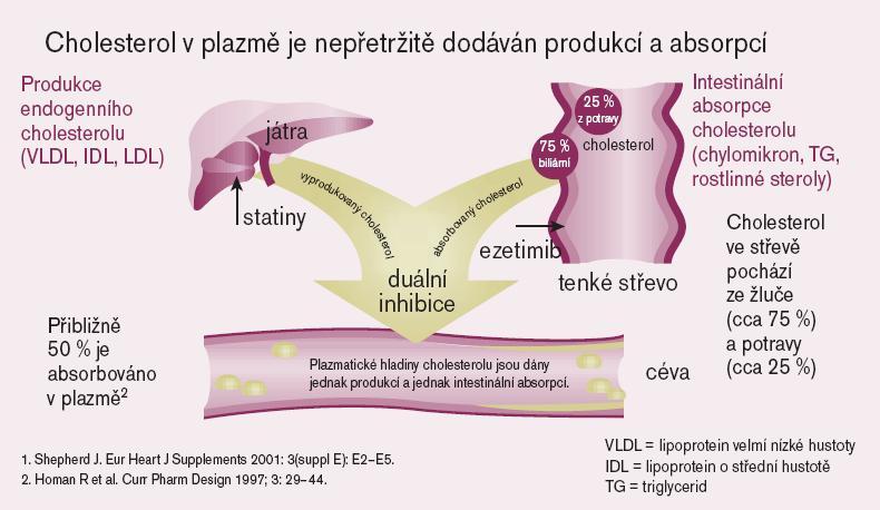 Mechanizmus účinku ezetimibu.