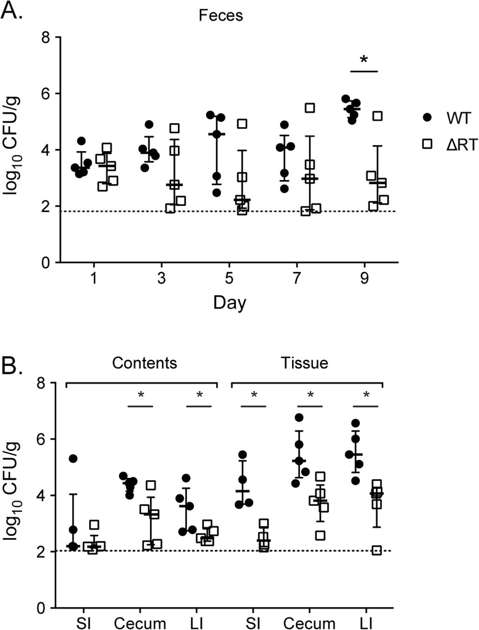 Enteropathogenic <i>E</i>. <i>coli</i> is dependent on the retron reverse transcriptase to persist within the murine intestine.