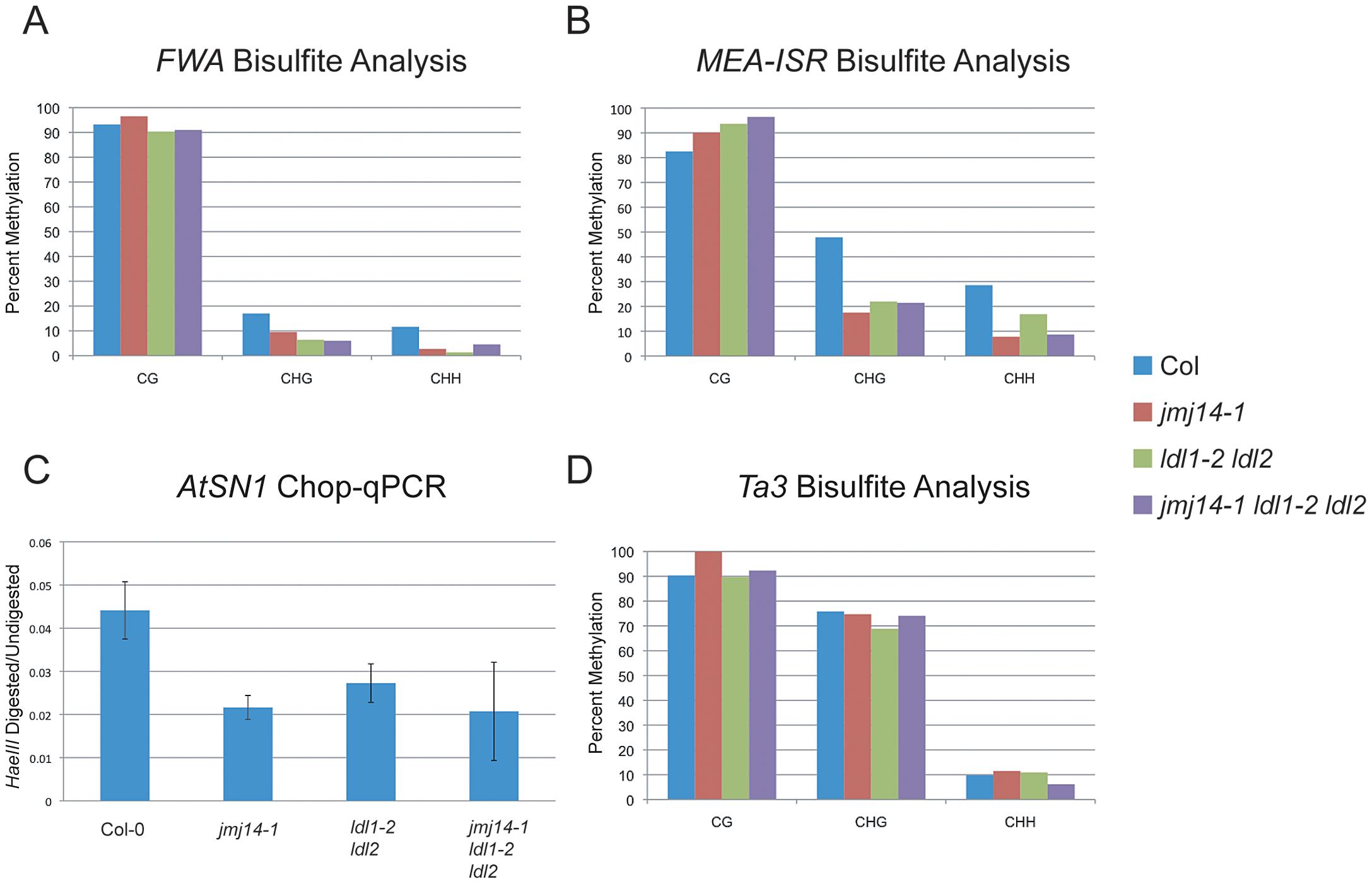 DNA methylation of RdDM targets in histone demethylase mutants.