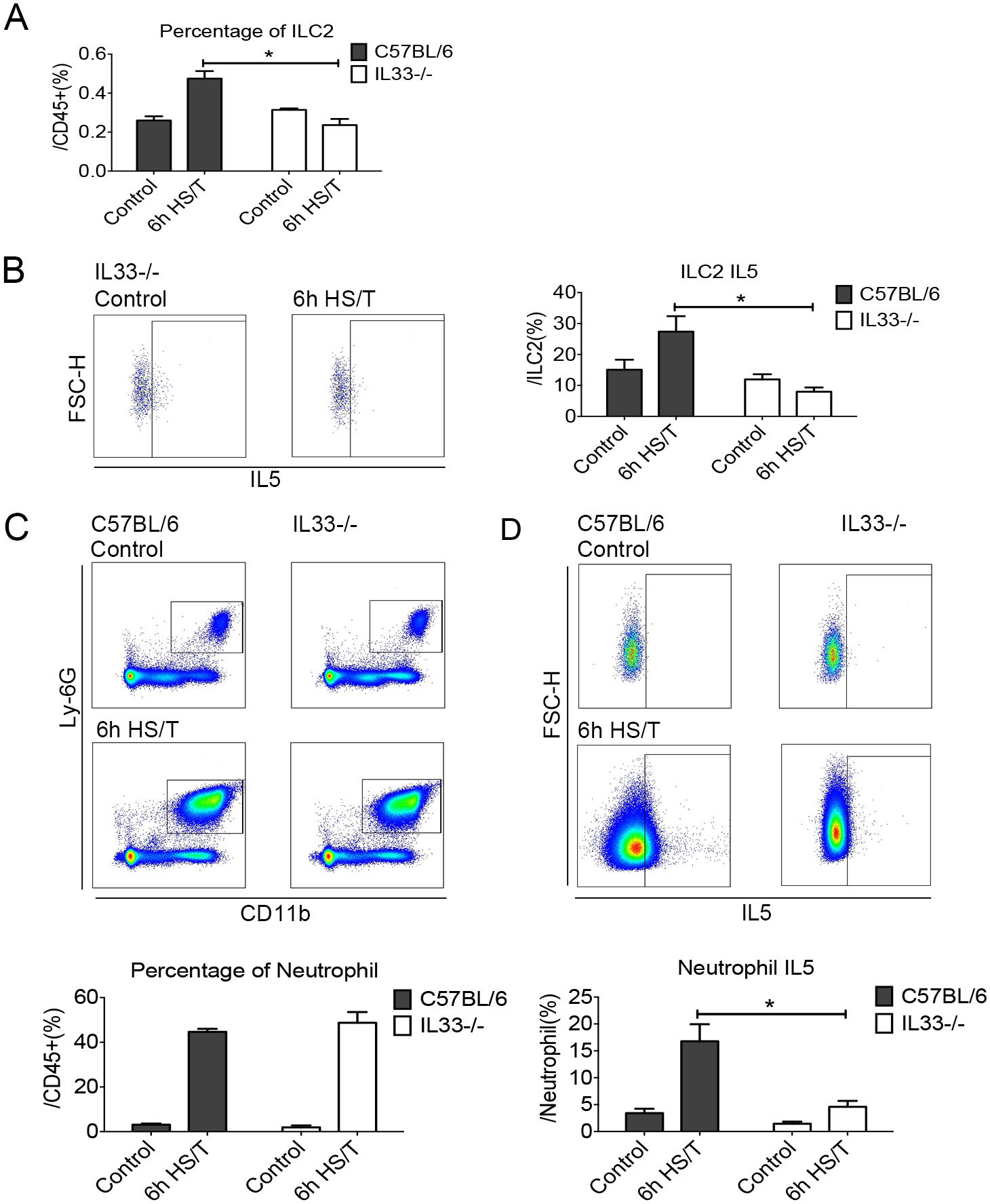 Effects of interleukin (IL) 33 deletion on group 2 innate lymphoid cells (ILC2) and neutrophil responses in lungs after resuscitated hemorrhagic shock and tissue trauma (HS/T).