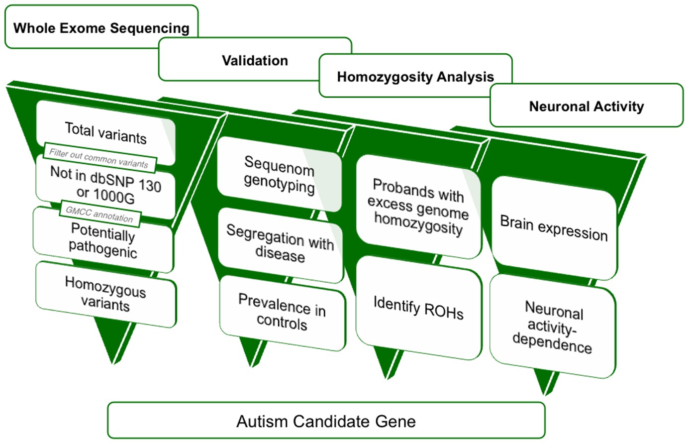 A four-dimensional approach to identifying autism candidate genes.