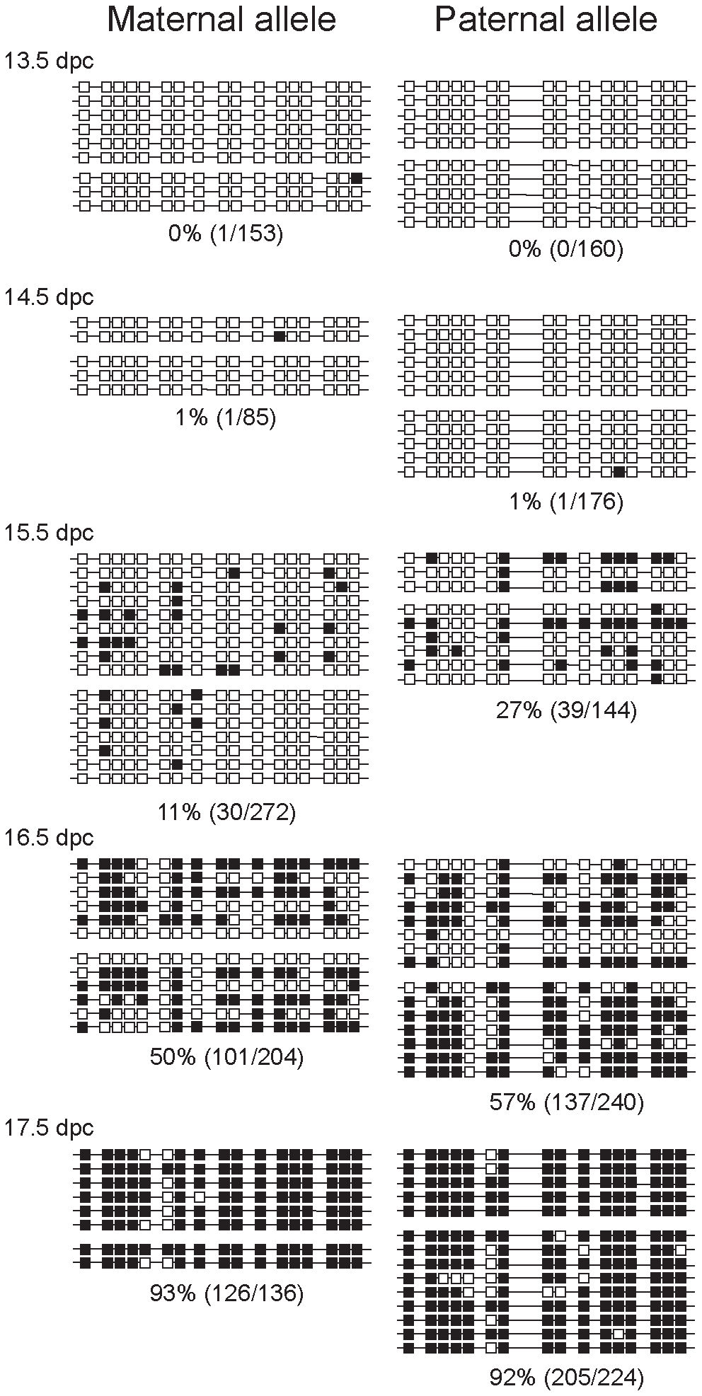 Methylation dynamics at the ICR in normal prospermatogonia.