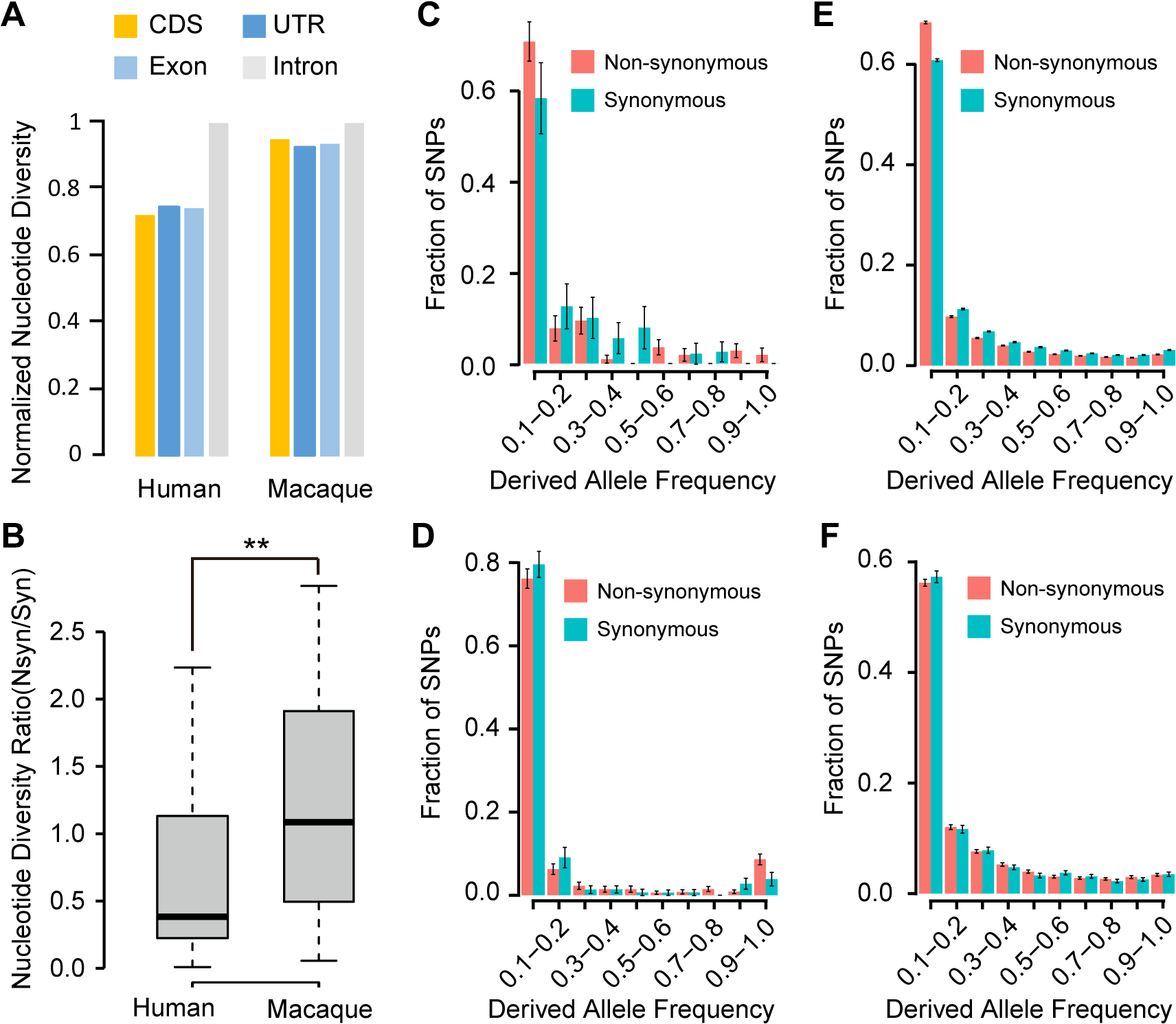 Evidence of purifying selection on the human <i>de novo</i> genes.