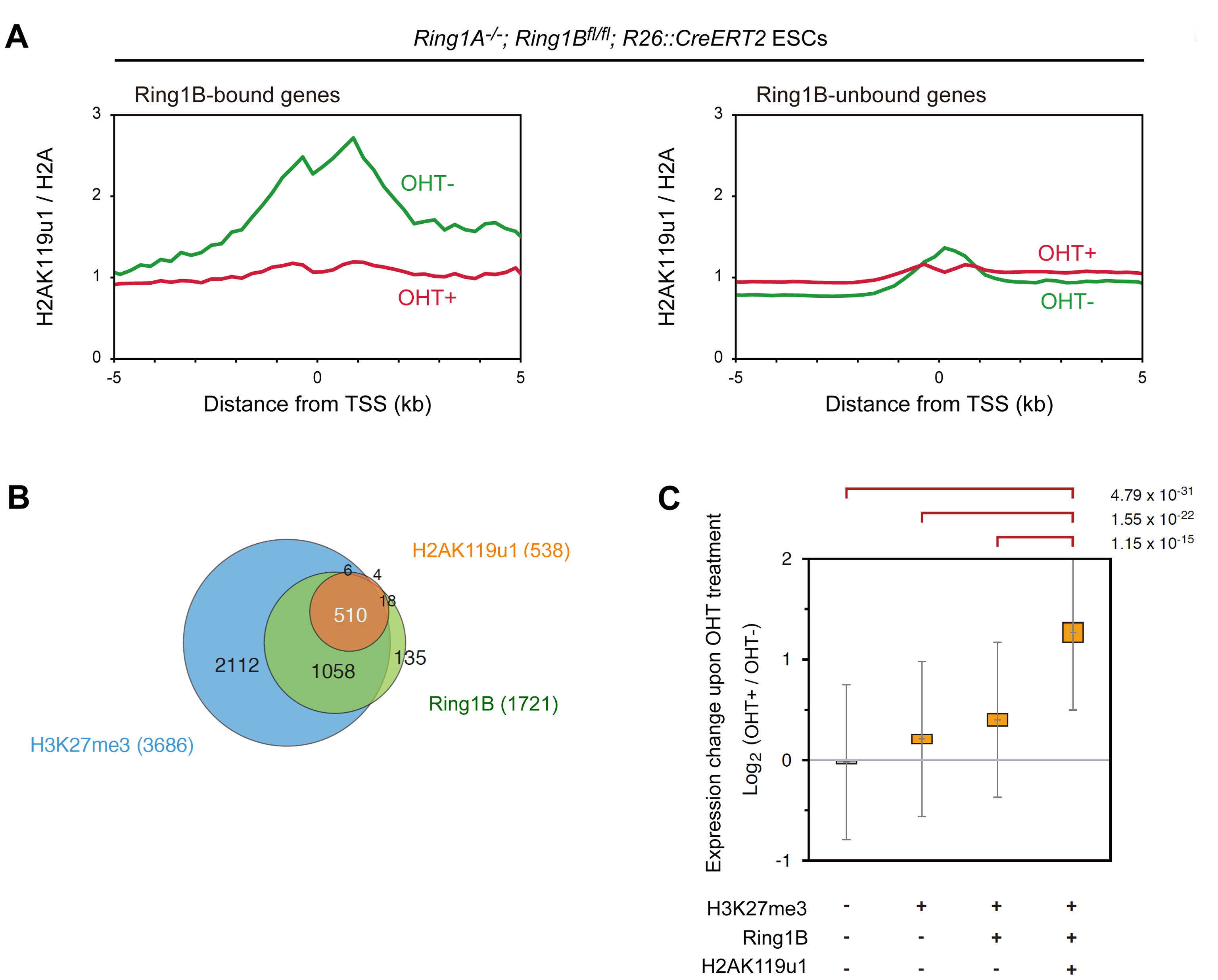Global mapping of Ring1B-dependent H2AK119u1 deposition in ESCs reveals that genes occupied by H2AK119u1 represent central targets of PRC1.
