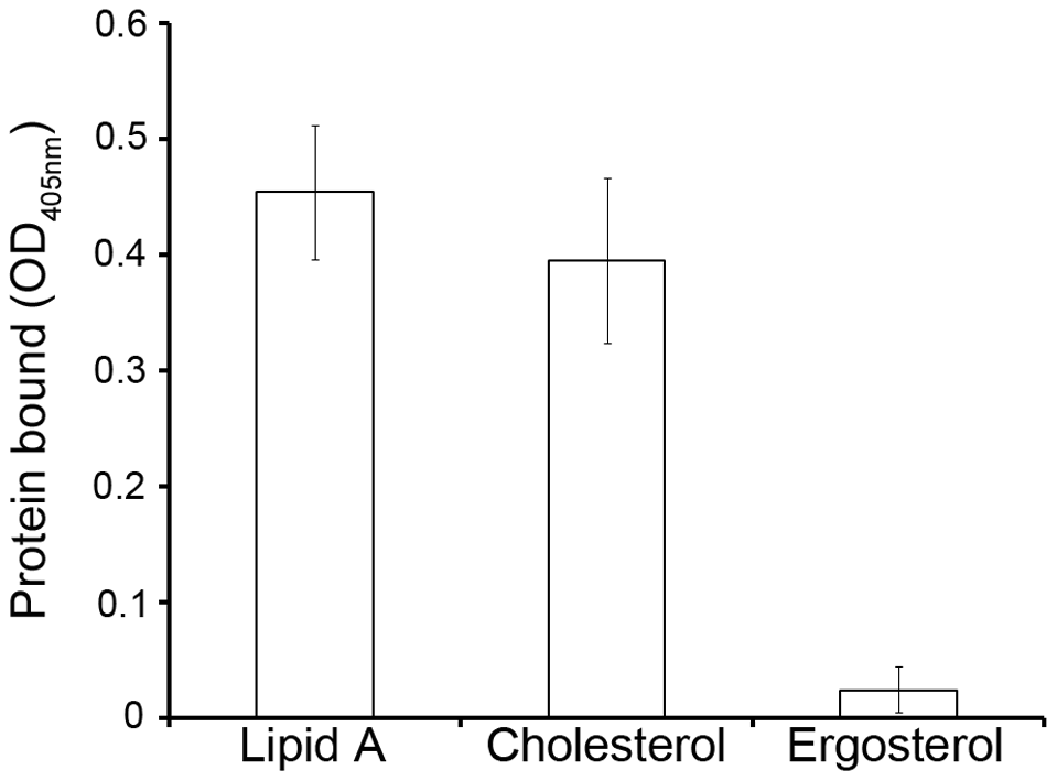 Binding of recombinant Mr-NPC2a to diphosphoryl lipid A from <i>E. coli</i>, cholesterol and ergosterol.