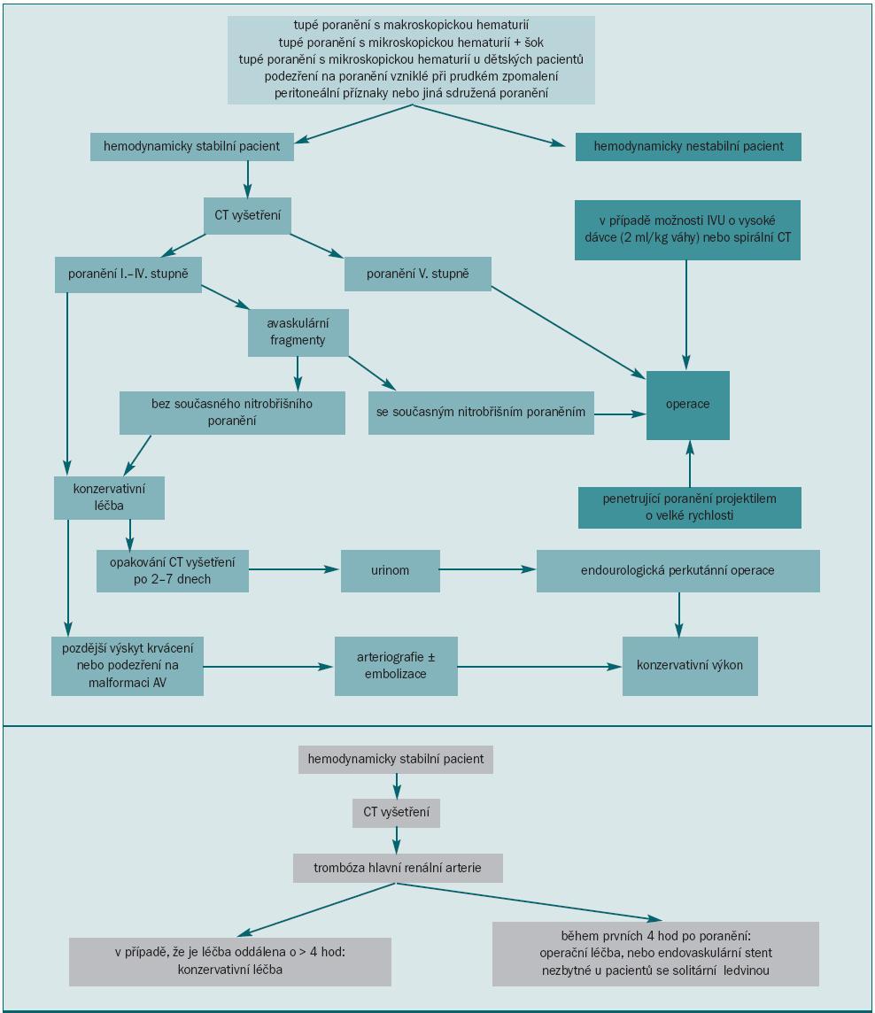 Diagnostické postupy při léčbě poranění ledviny.