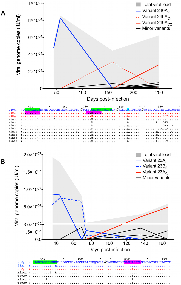 Evolution of the partial E2 region of individual HCV variants at the amino acid level.