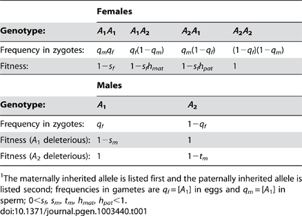 """Fitnesses and frequencies of genotypes at the <i>A</i> locus.<em class=""""ref"""">1</em>"""