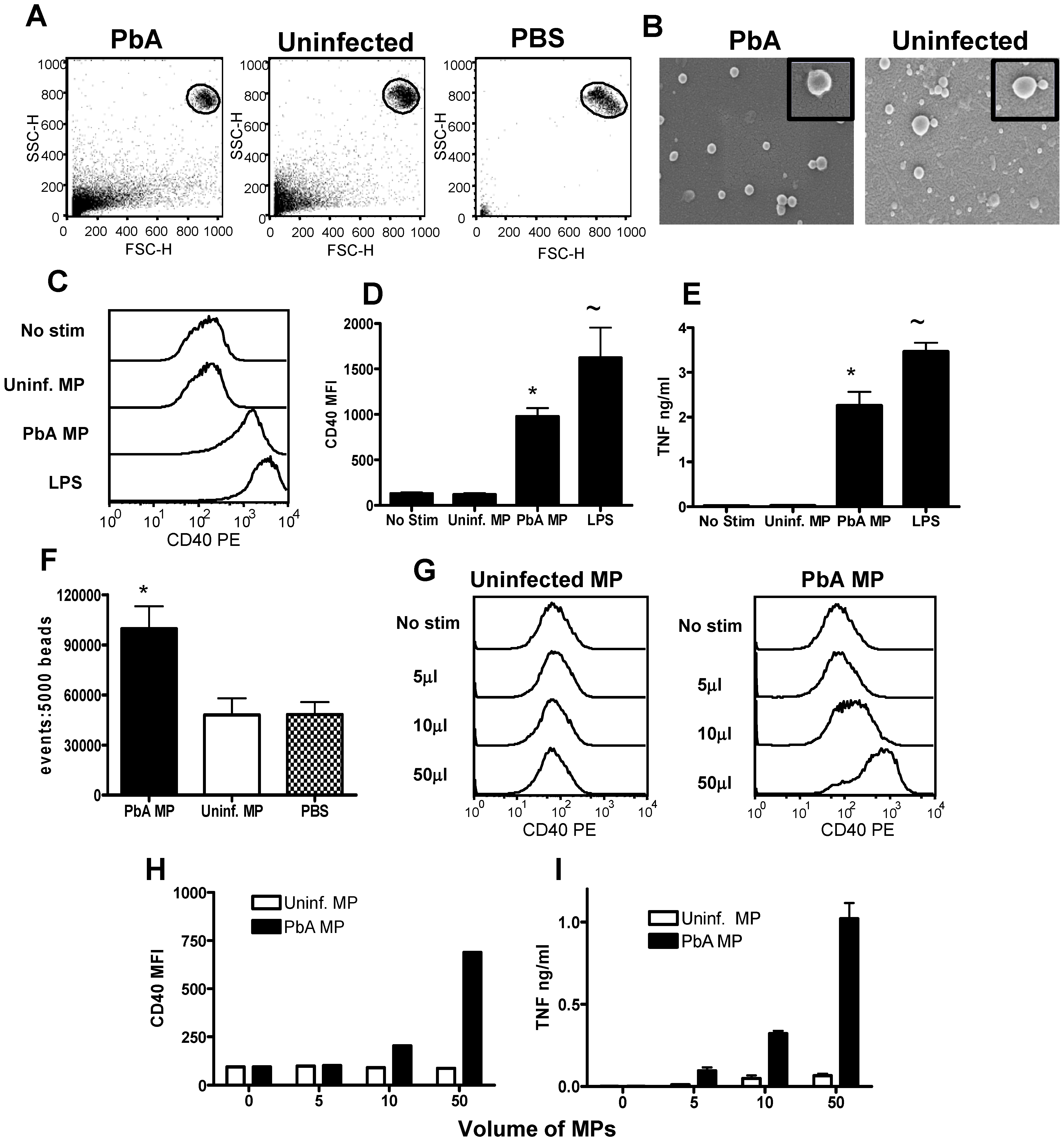 Plasma microparticles derived from malaria infected mice stimulate strong macrophage pro-inflammatory responses in vitro.