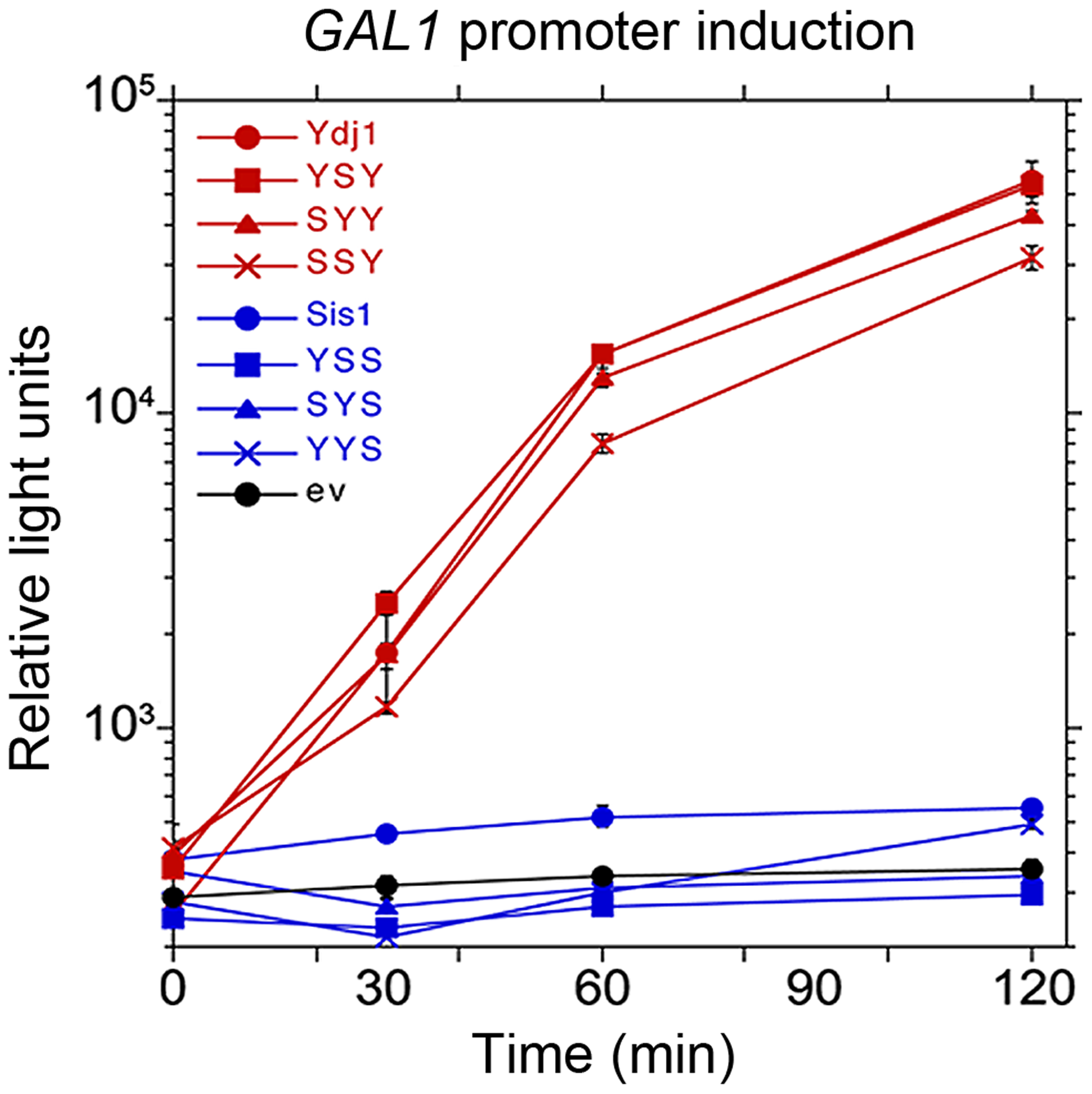 Function of Sis1/Ydj1 hybrids in galactose induction.