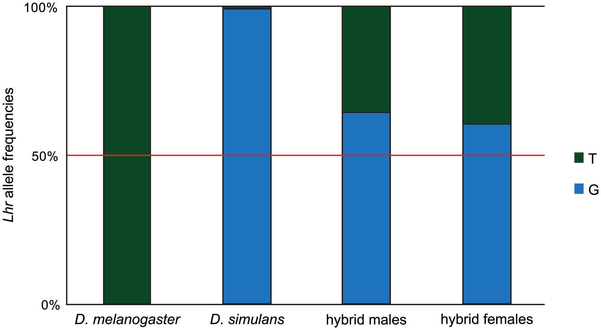 Asymmetric expression of <i>Lhr</i> orthologs in hybrids.
